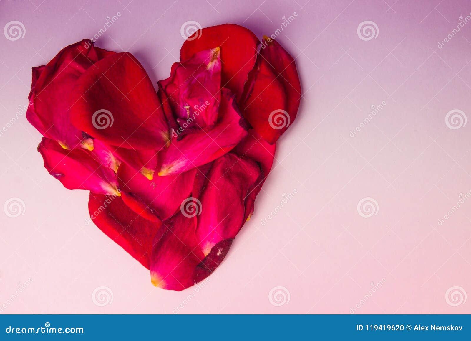 Corazón de Rose Petals