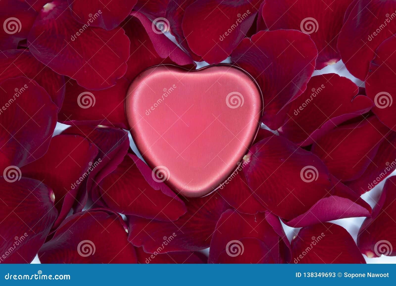 Corazón rojo del metal y pétalos color de rosa rojos