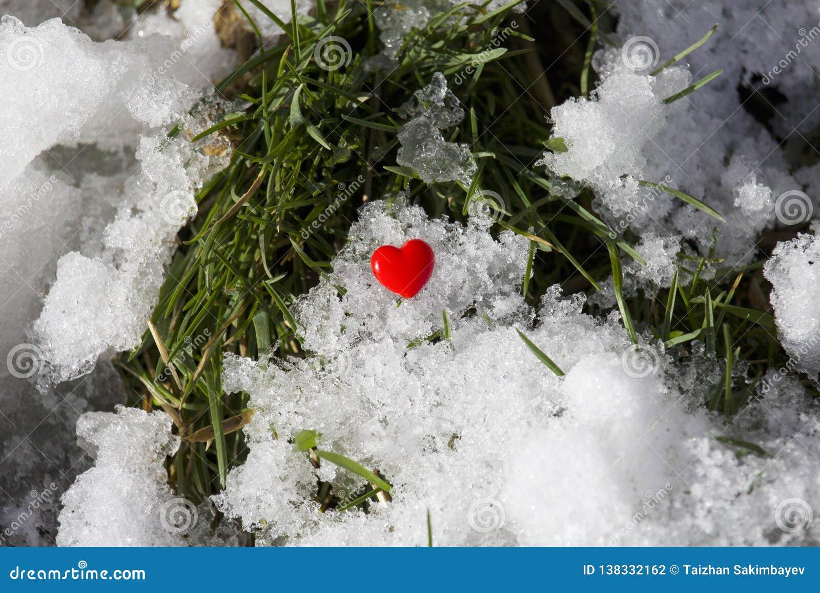Corazón rojo en un fondo de la nieve y de la hierba verde
