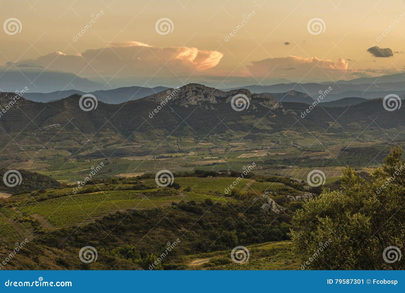 Corbieres berg, Frankrike