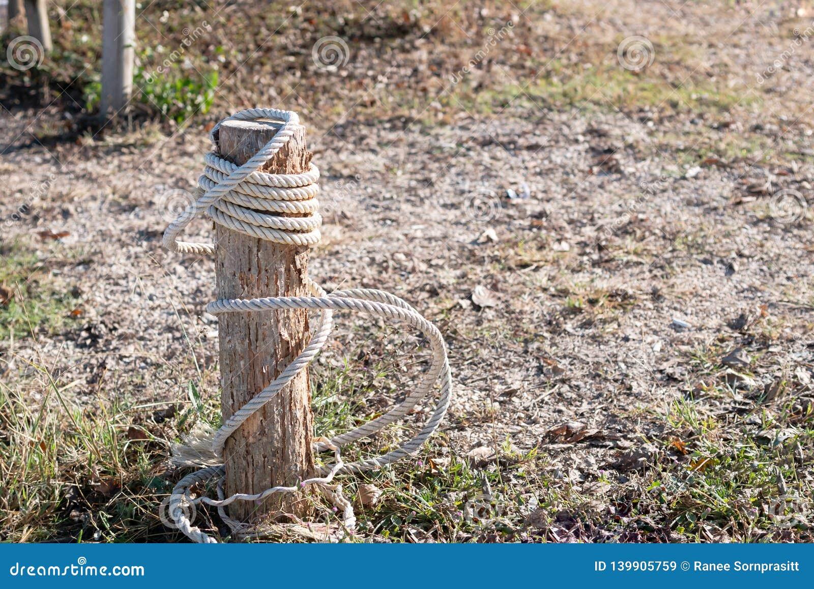 Corda branca amarrada com coto quebrado na terra