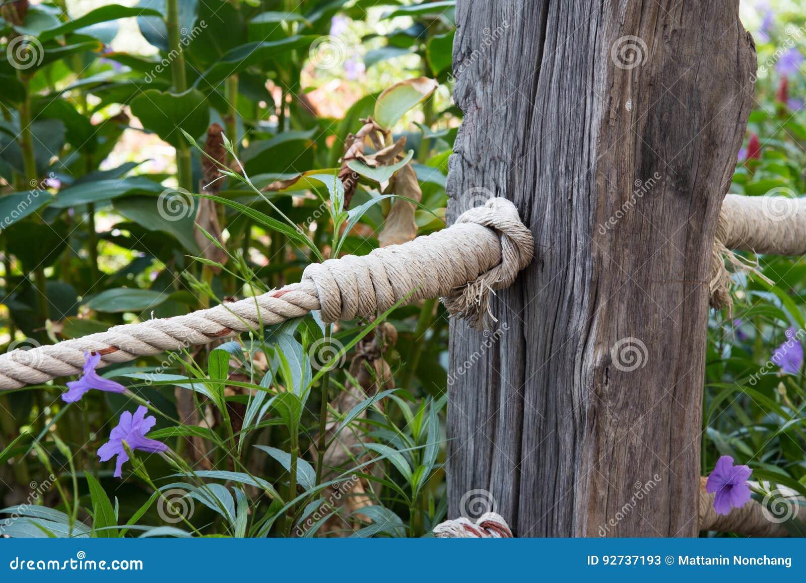 corde en bois de barri re et de noeud photo stock image 92737193. Black Bedroom Furniture Sets. Home Design Ideas