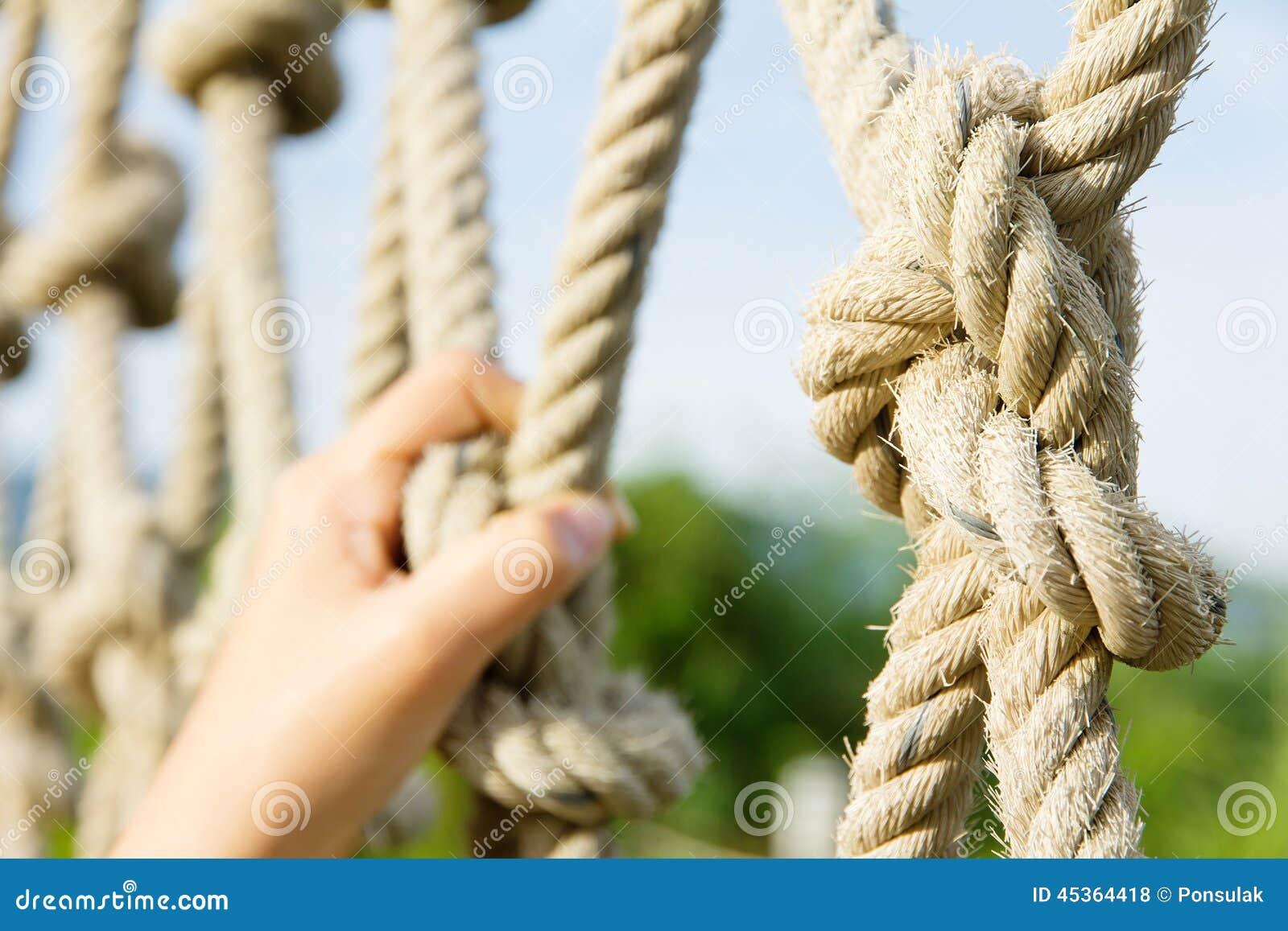 Cordes s élevantes
