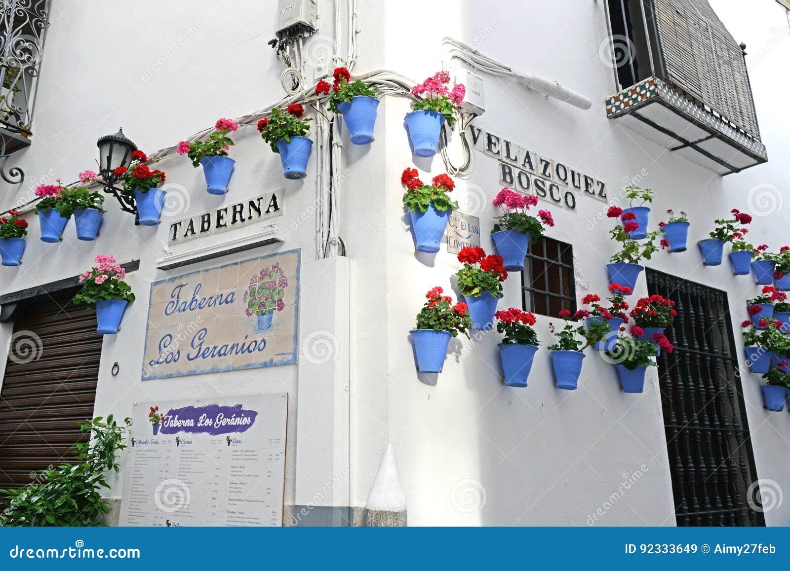 CORDOBA, ИСПАНИЯ - 5-ОЕ МАЯ 2017: Цветки в цветочном горшке на белых стенах на известной улице Calleja de Las Flores цветка в ста