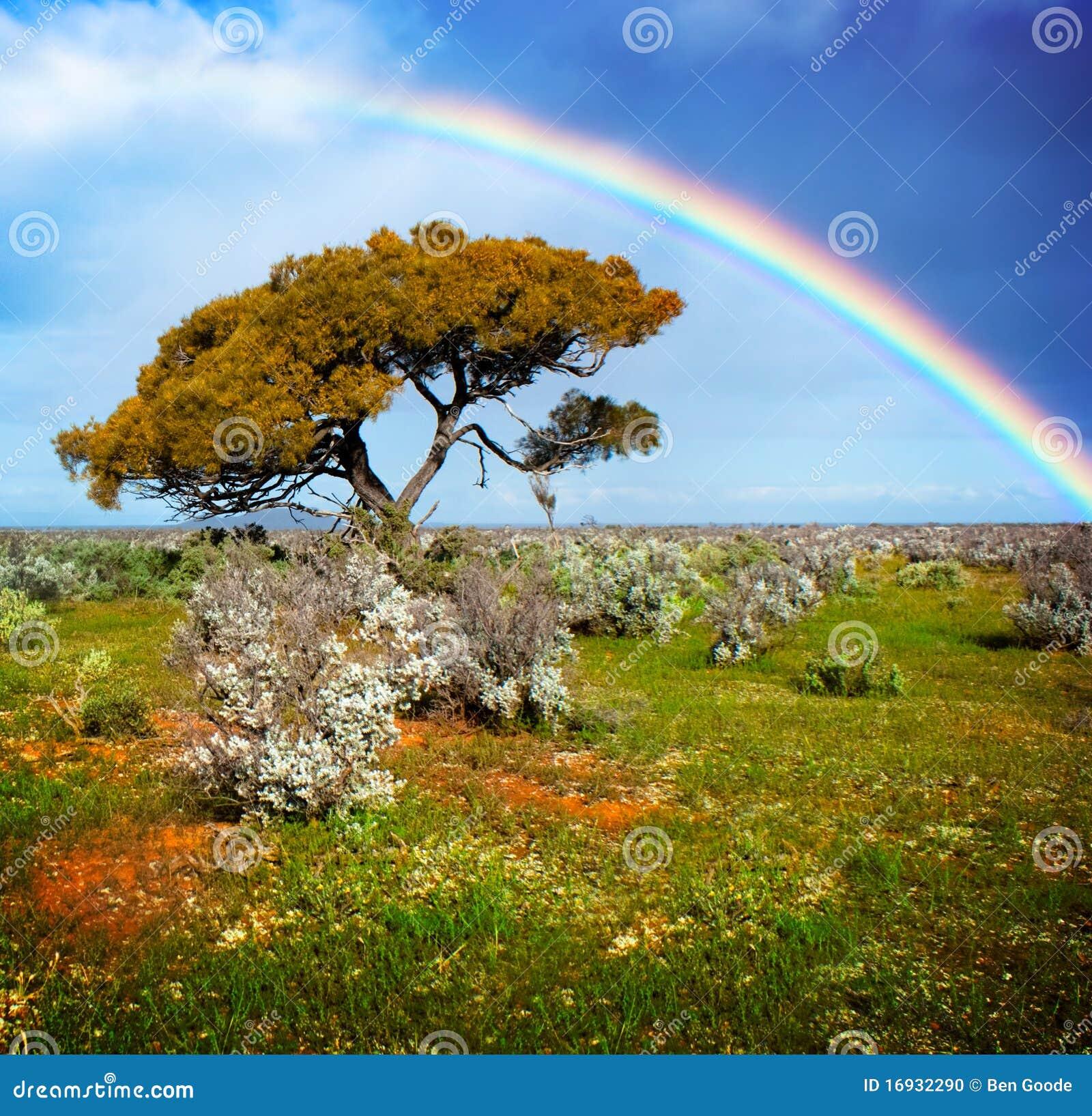 Cores do arco-íris