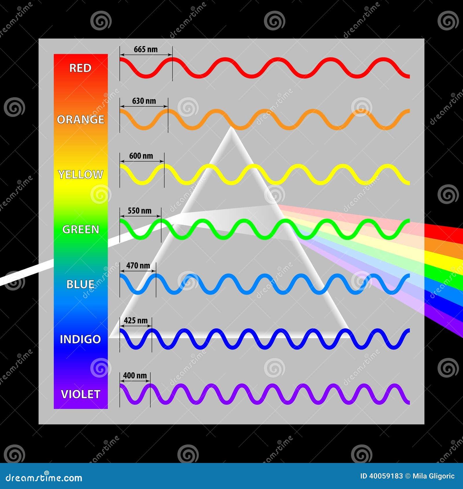 Cores Do Comprimento De Onda No Espectro Ilustração do Vetor ... dbd4dd2d6d