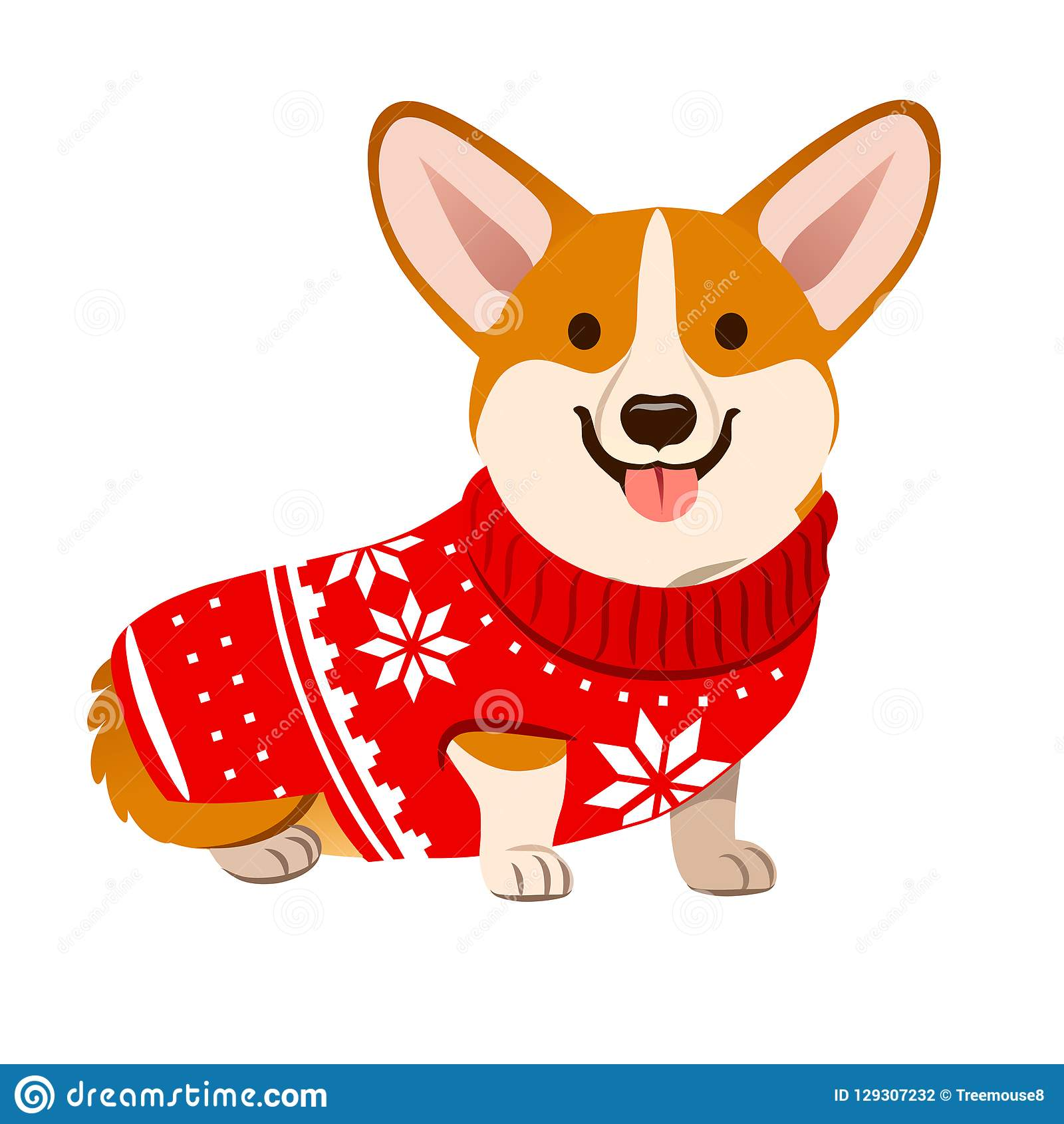 9cf953c5 Corgi dog wearing a Christmas red sweater with Nordic snowflake pattern  vector cartoon illustration isolated on white. Funny humorous Christmas, pet  lover, ...