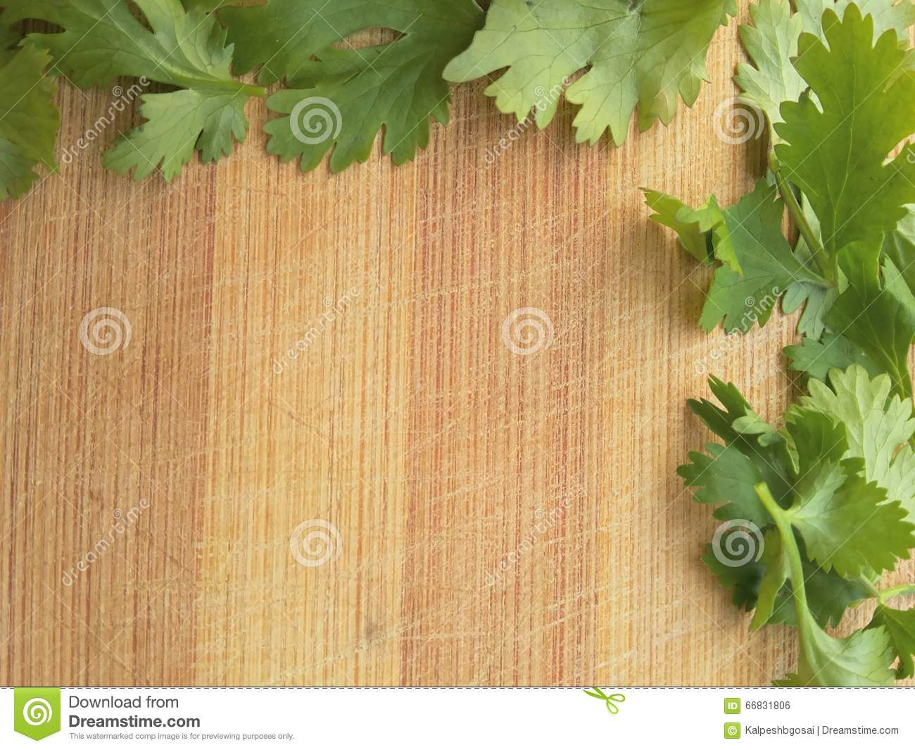 Coriander Leaves Border On Wooden Background Stock Photo