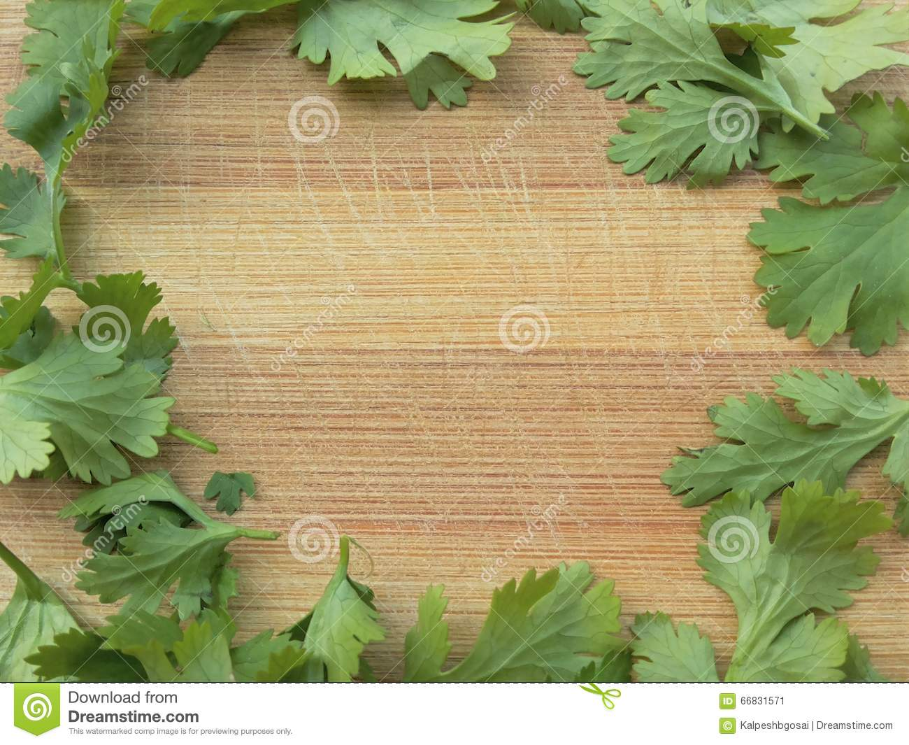 Coriander Leaves Frame On Wooden Background Stock Photo