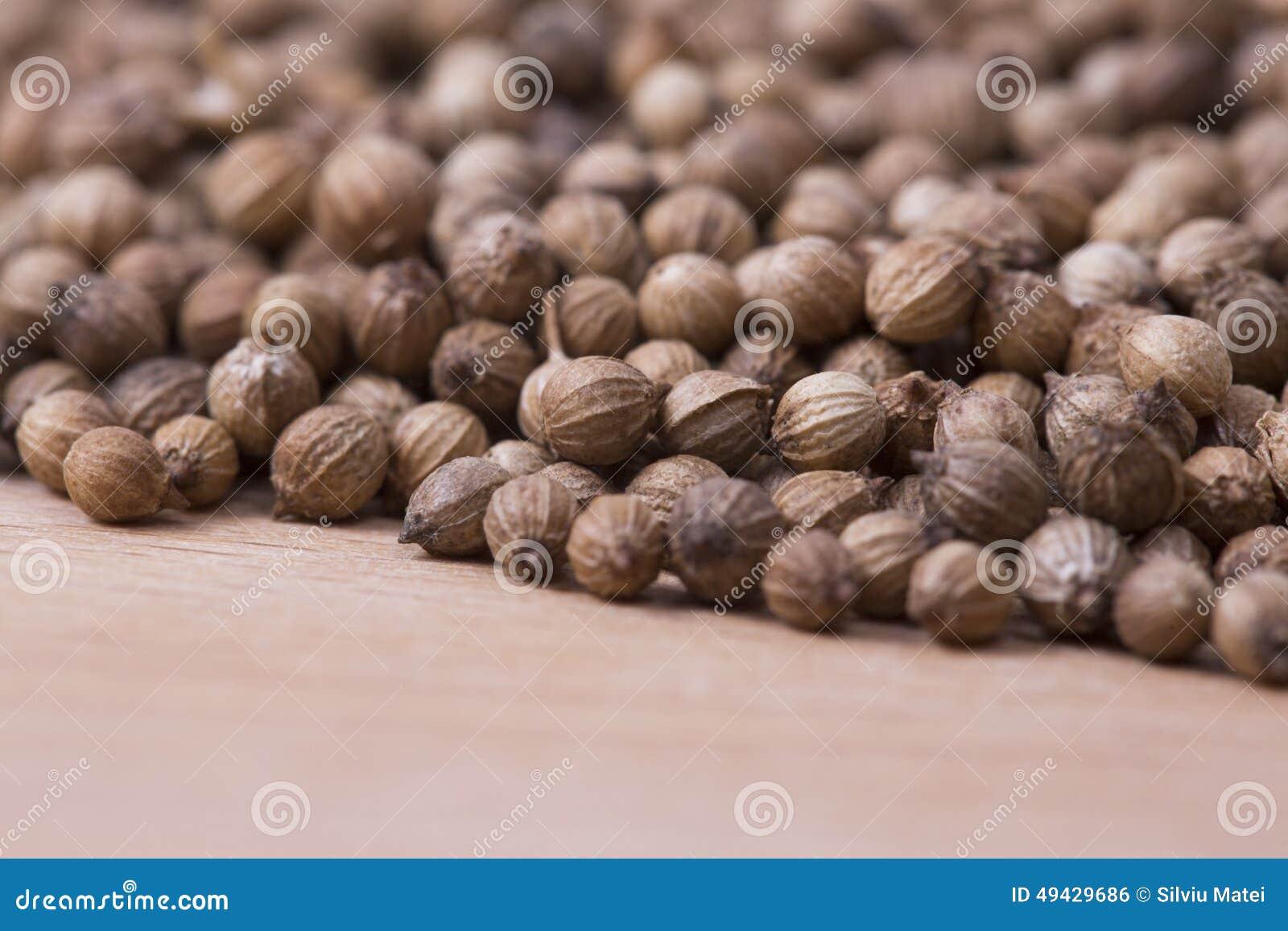 Coriander seeds closeup