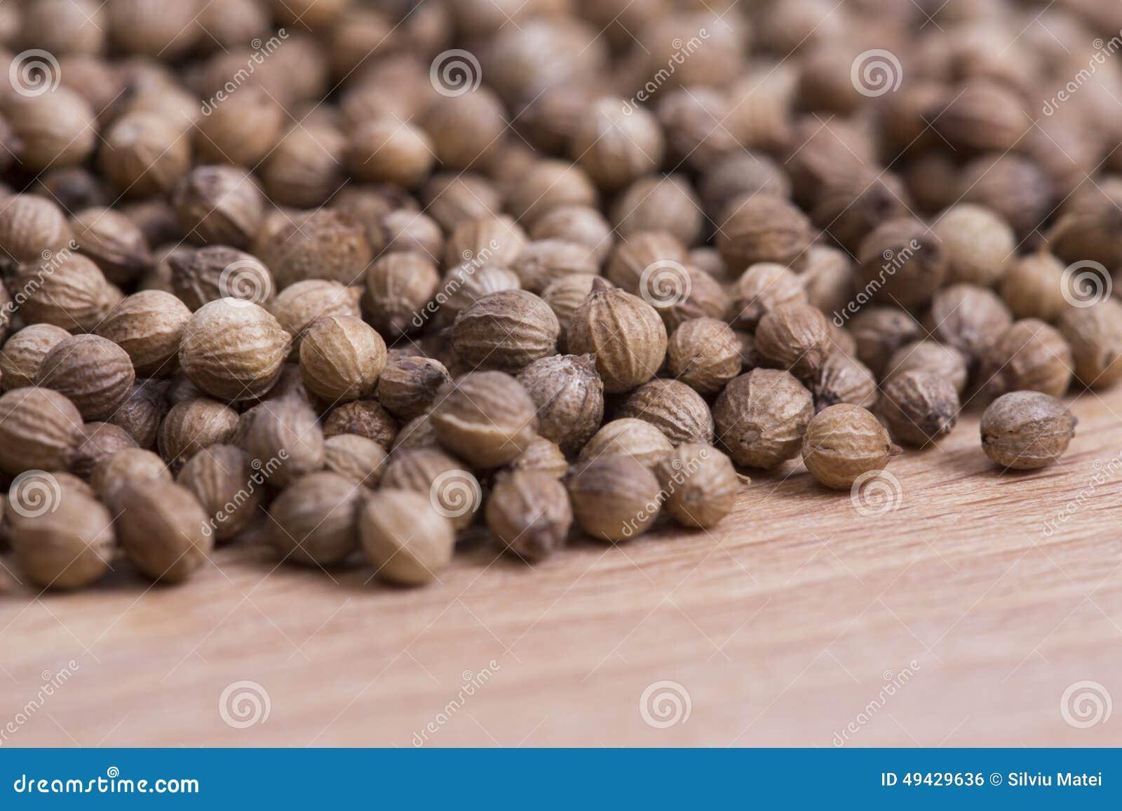 Coriander Seeds Stock Photo Image 49429636