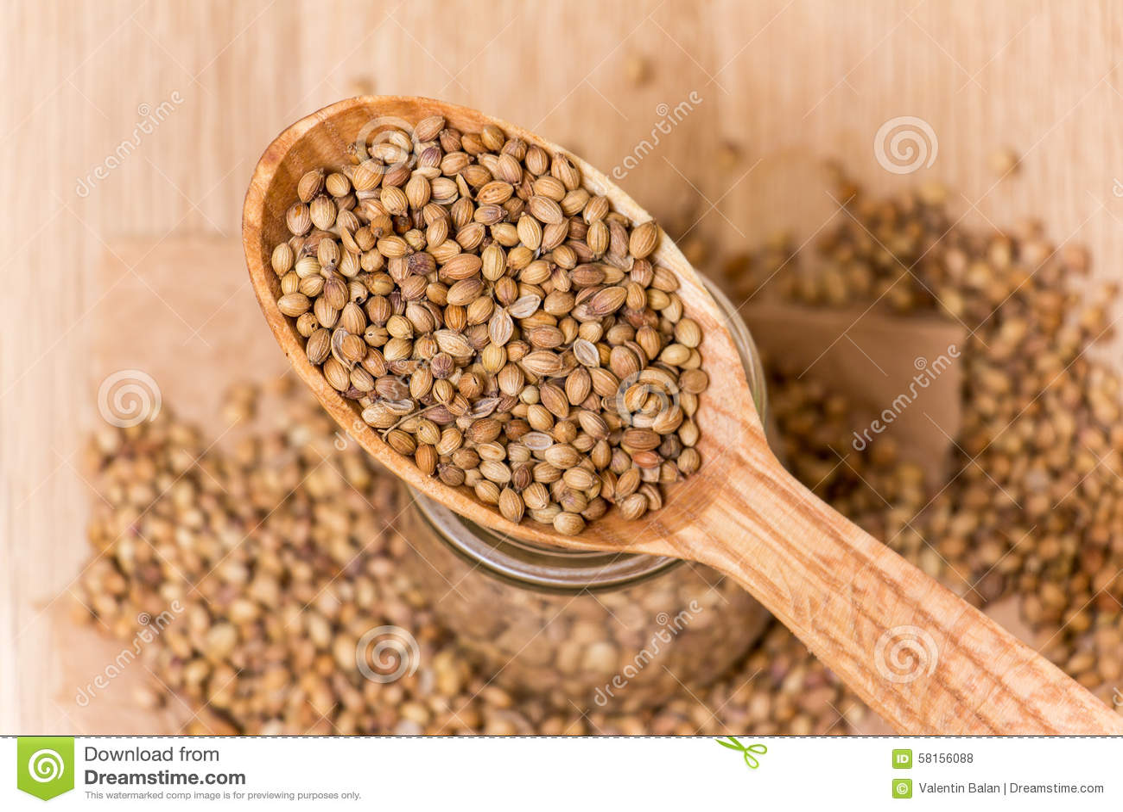 Coriander Seeds Stock Photo Image 58156088