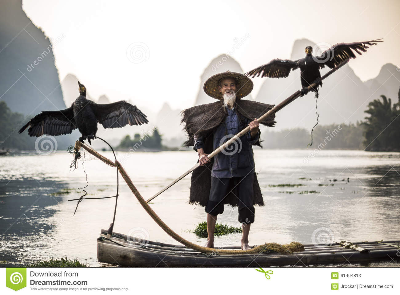 Cormorant fisherman showing birds
