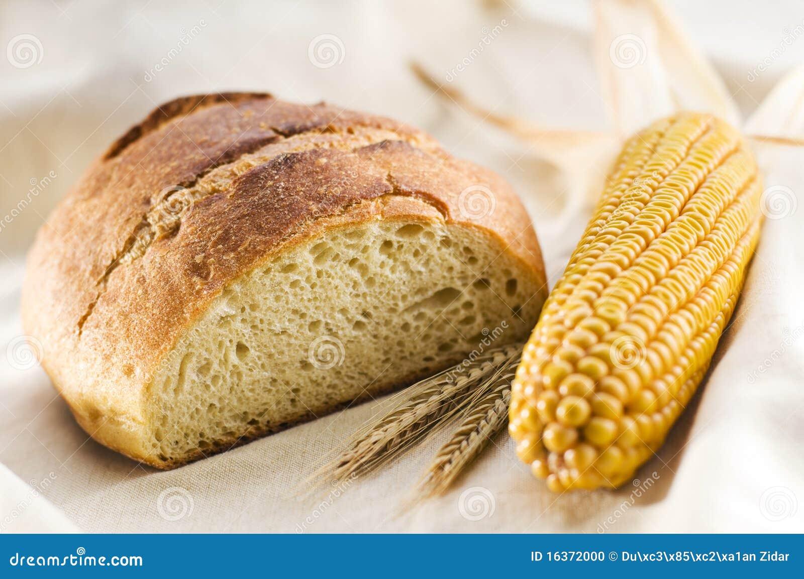 Corn Bread Stock Photo - Image: 16372000