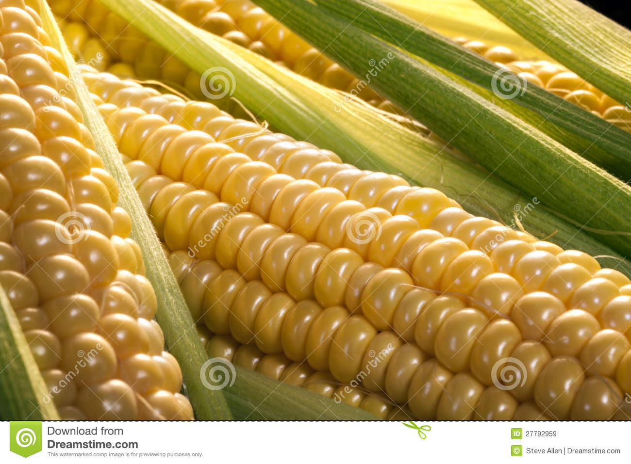 Download Corn on the cob stock image. Image of yellow, corn, supermarket - 27792959