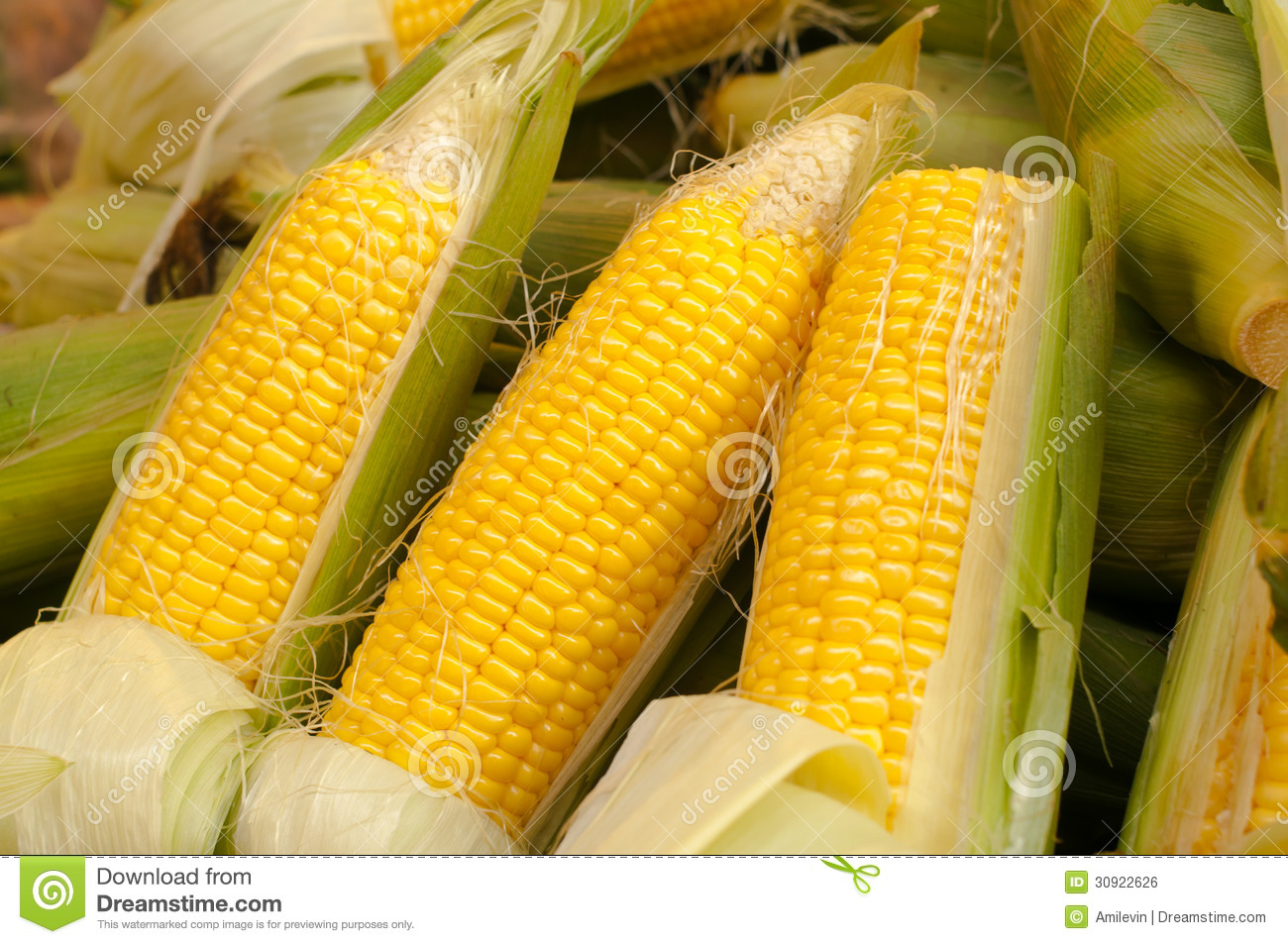 corn cobs A corncob, also called cob of corn,  be added to soup stock or made into traditional sweetened corncob jelly bedding for animals – cobs absorb moisture and.