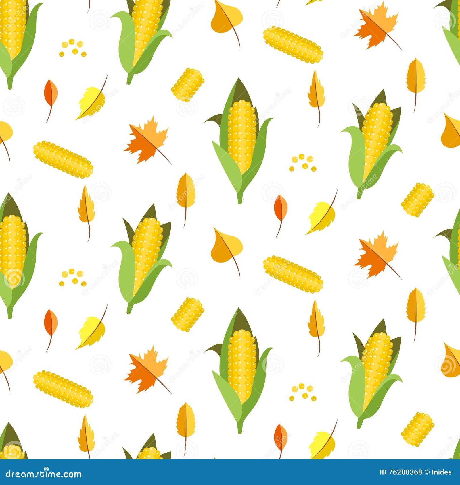 corn seamless pattern vector illustration maize ear or cob stock