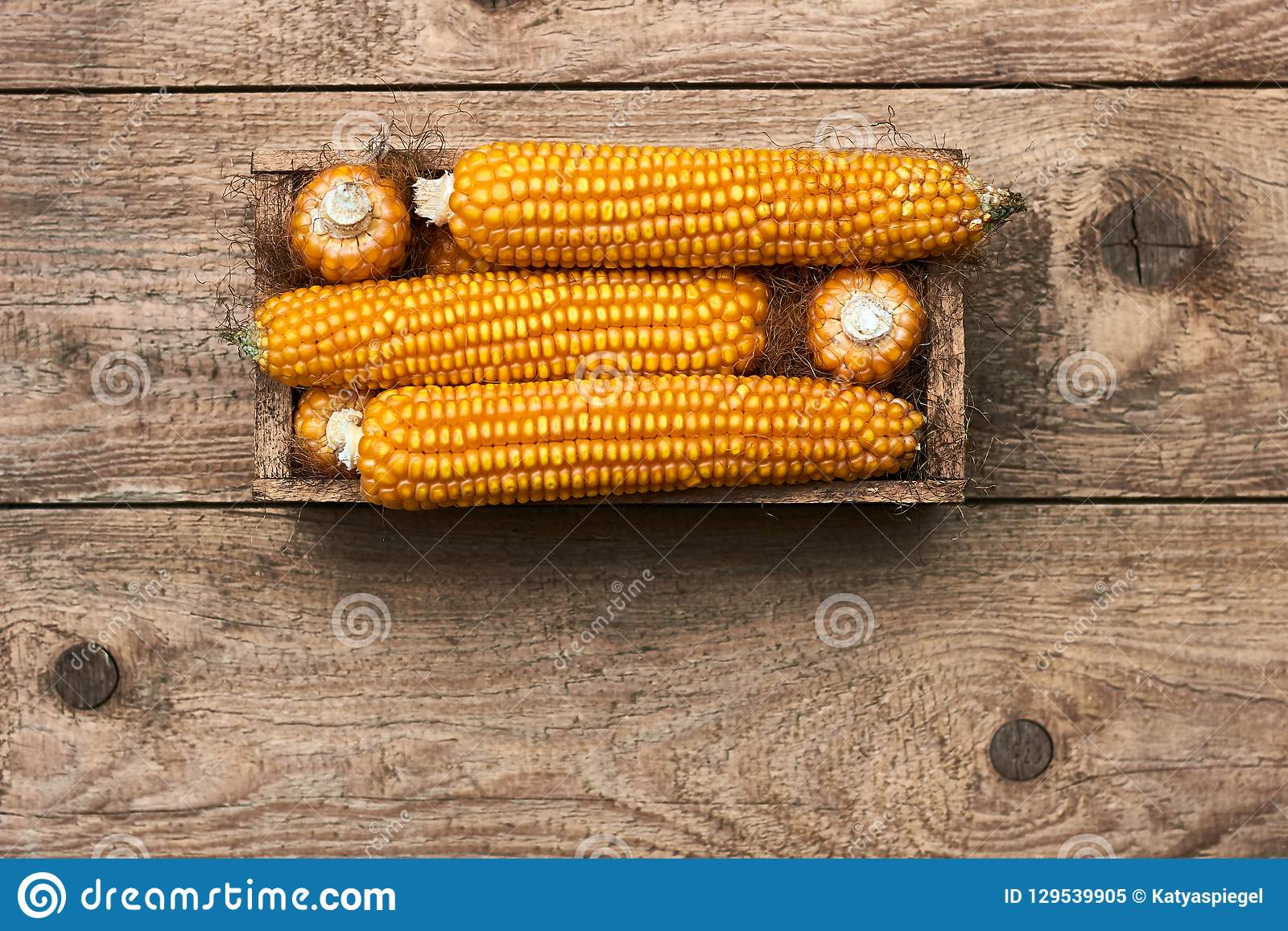 Corn in wooden box on old shabby grungy rustic wooden background, flat lay