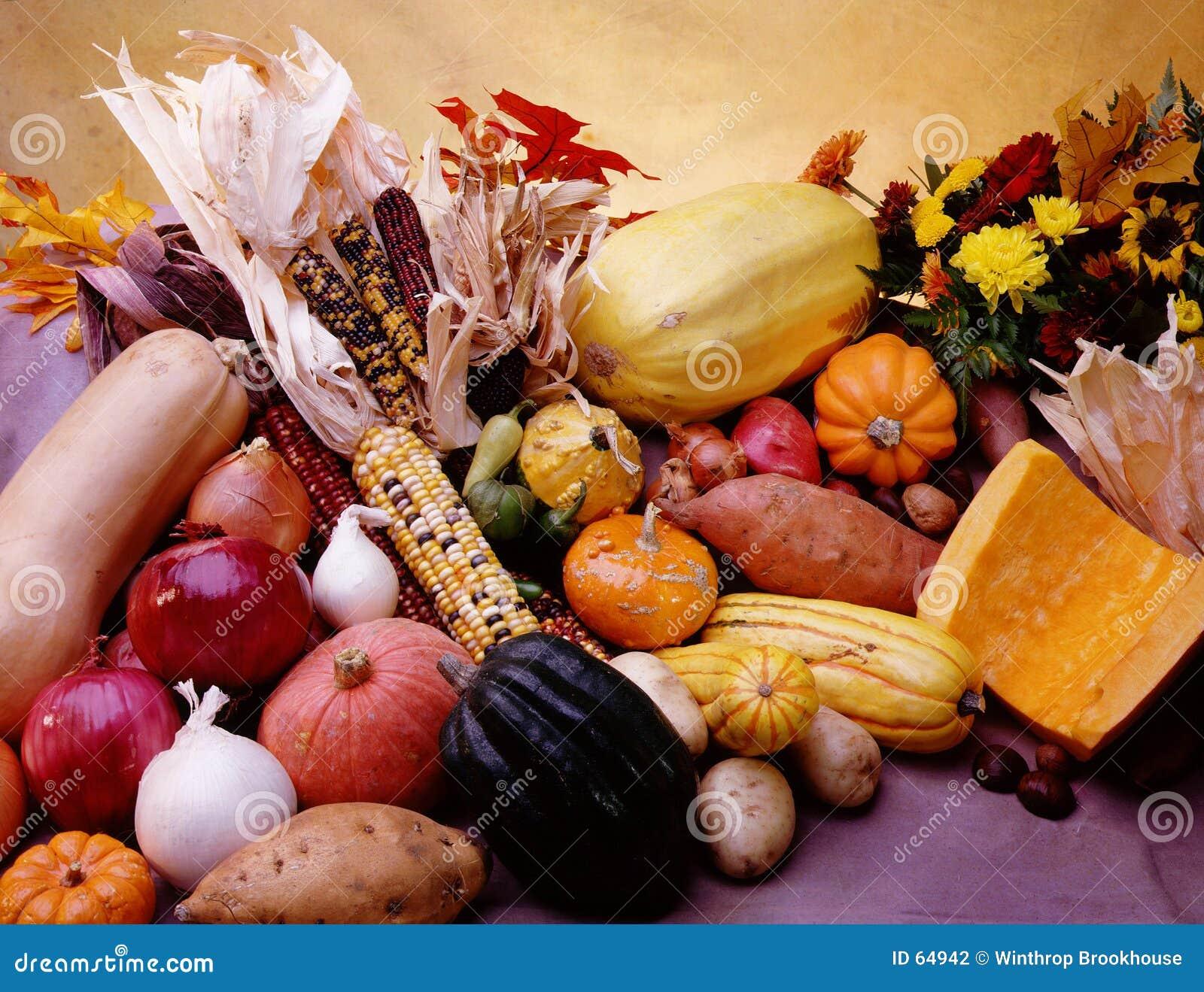 Download Corne d'abondance végétale photo stock. Image du potatoes - 64942