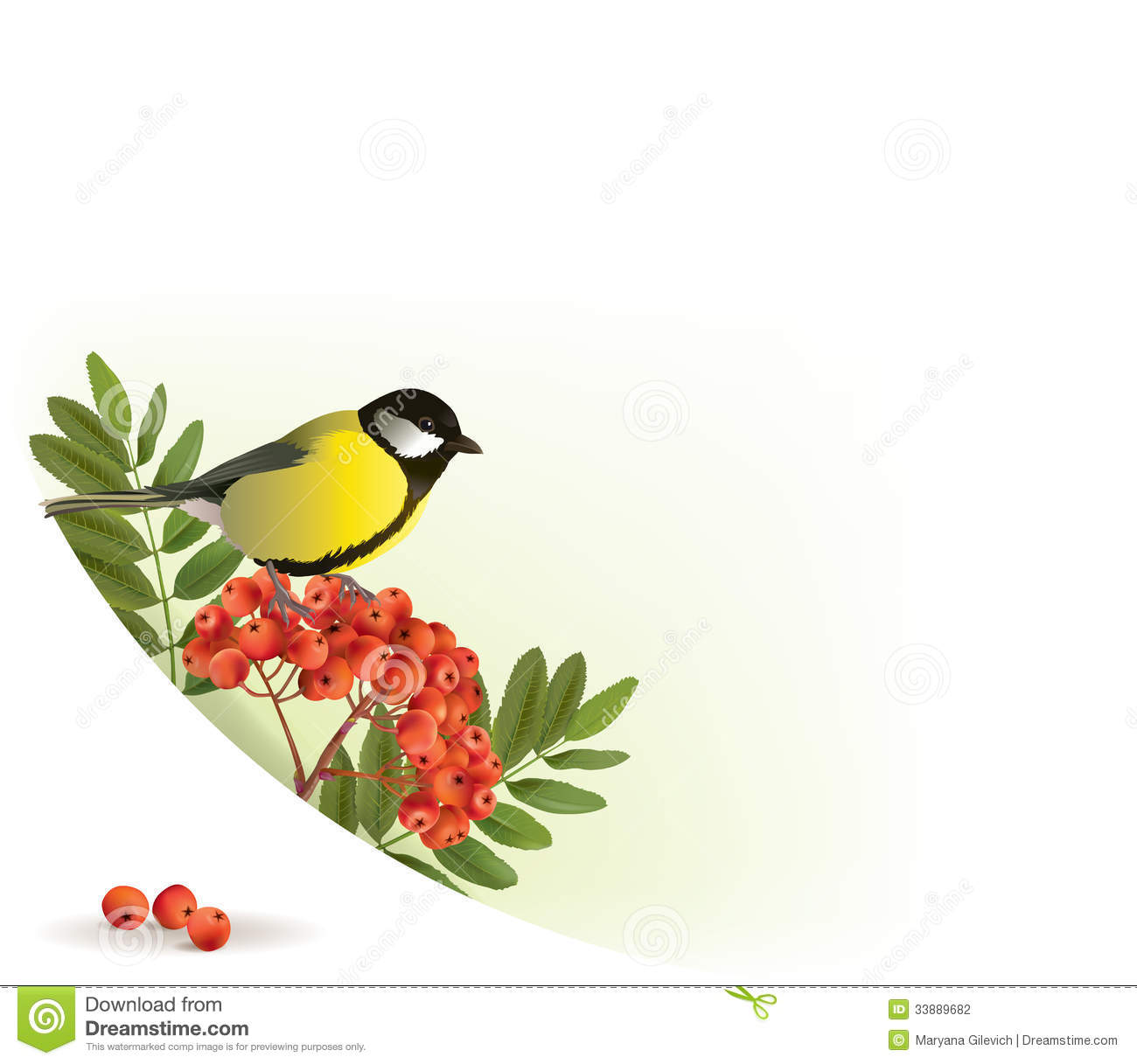 corner banner with rowan and tomtit stock photography image 33889682
