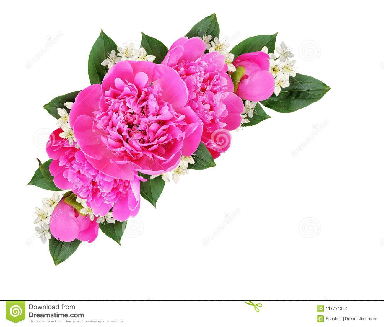 Corner Decoration With Pink Peonies And Small White Flowers Stock