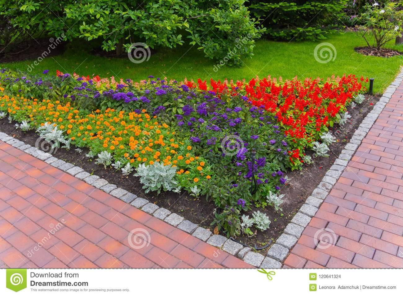 Corner Flowerbed With Bright Orange Blue And Red Flowers At The