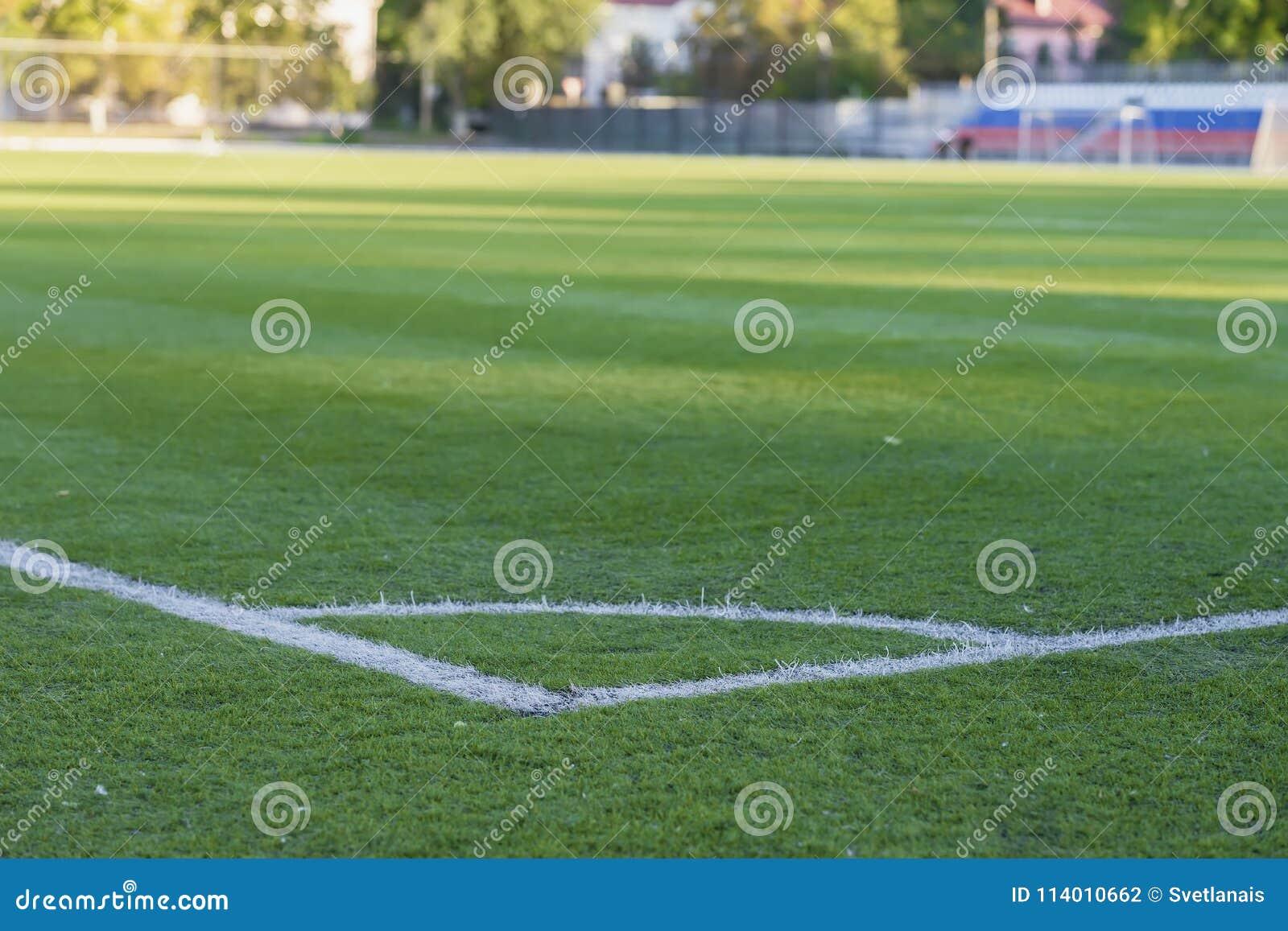 green grass football field. Royalty-Free Stock Photo Green Grass Football Field N