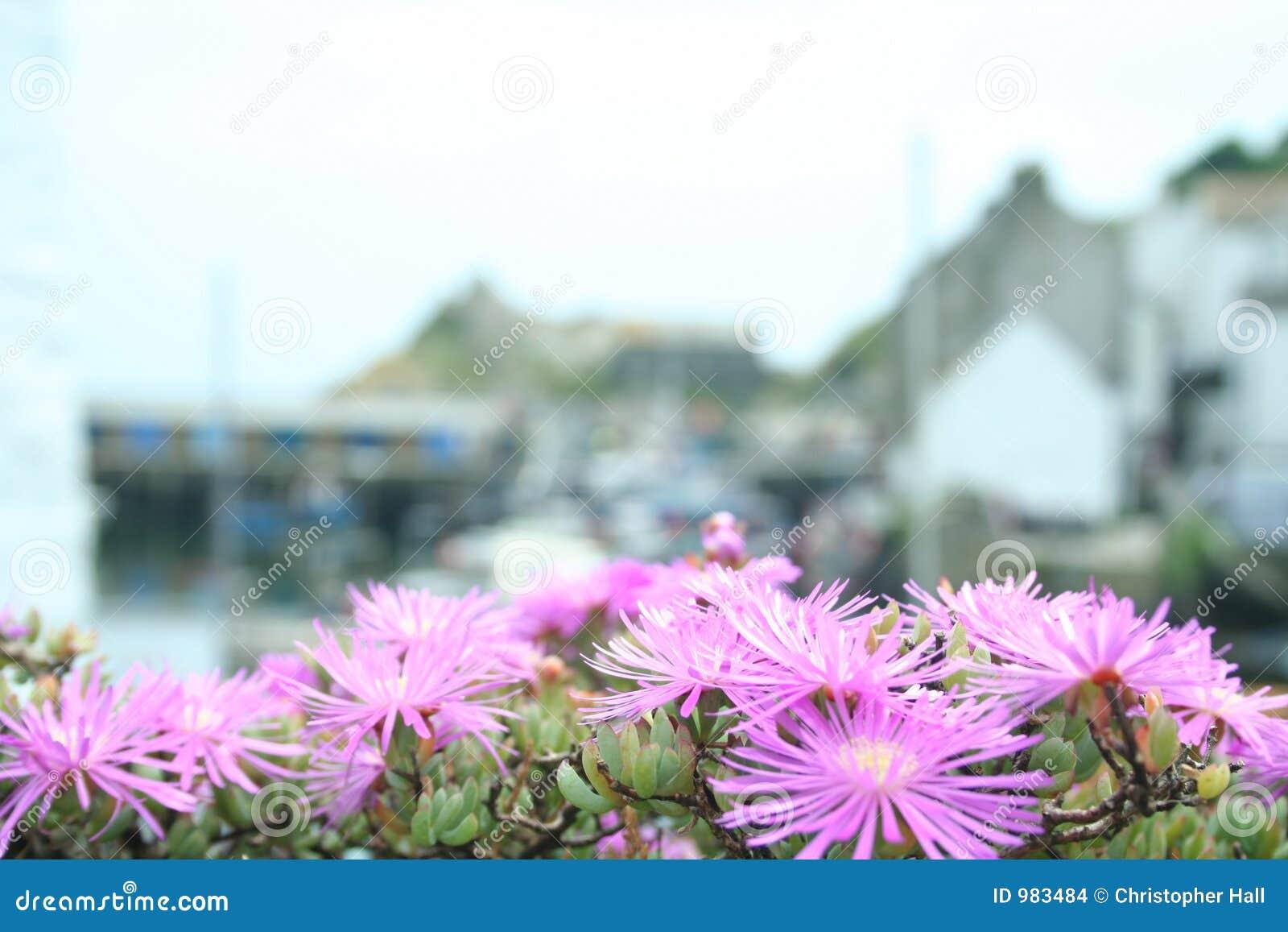 Cornish Fishing Village Stock Images Image 983484