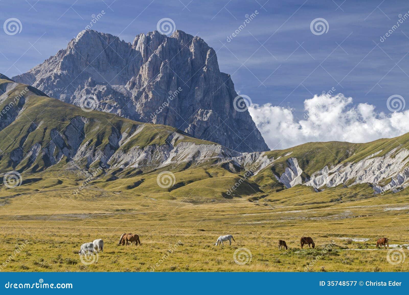 Corno som är stor i Abruzzo