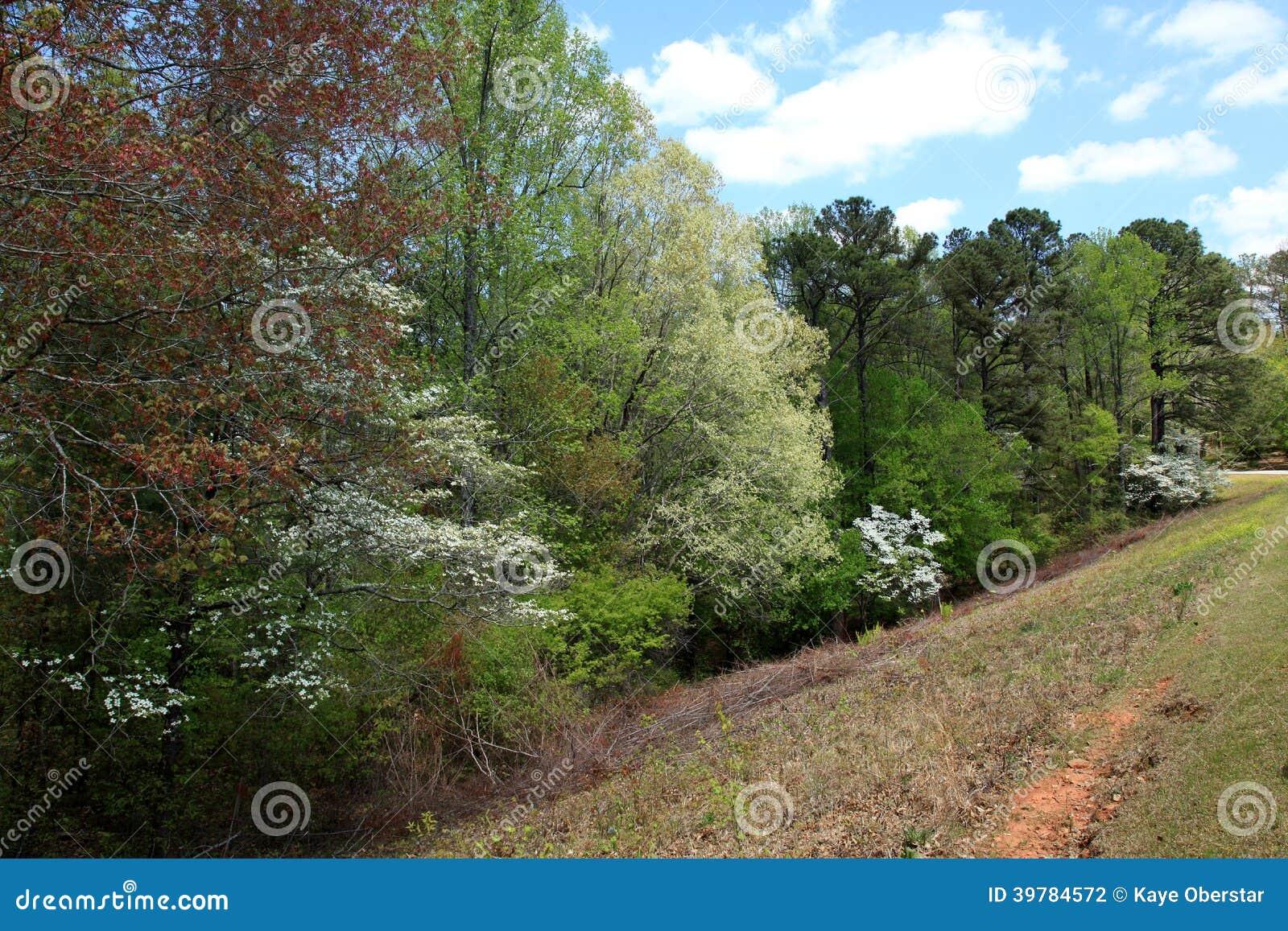 Cornouillers aux jardins de callaway photo stock image for Aux jardins