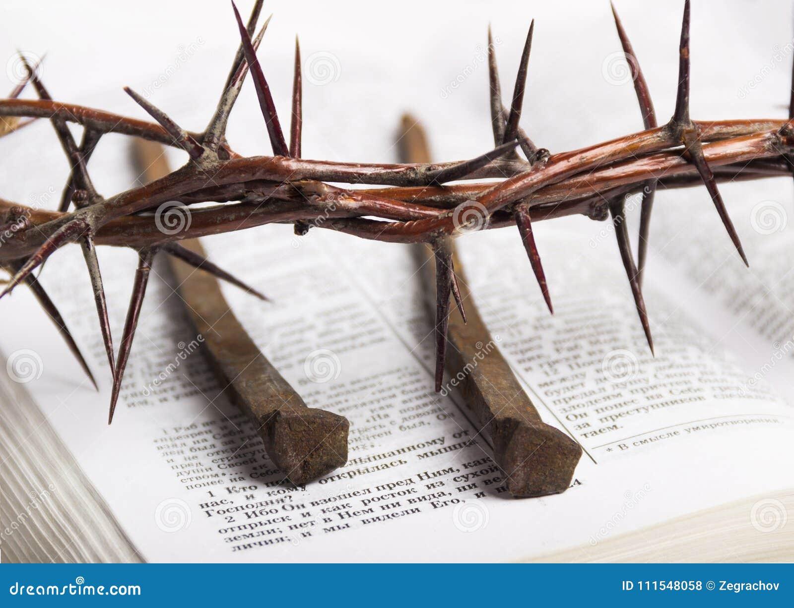 Corona de los clavos de Jesus Christ Bible de las espinas