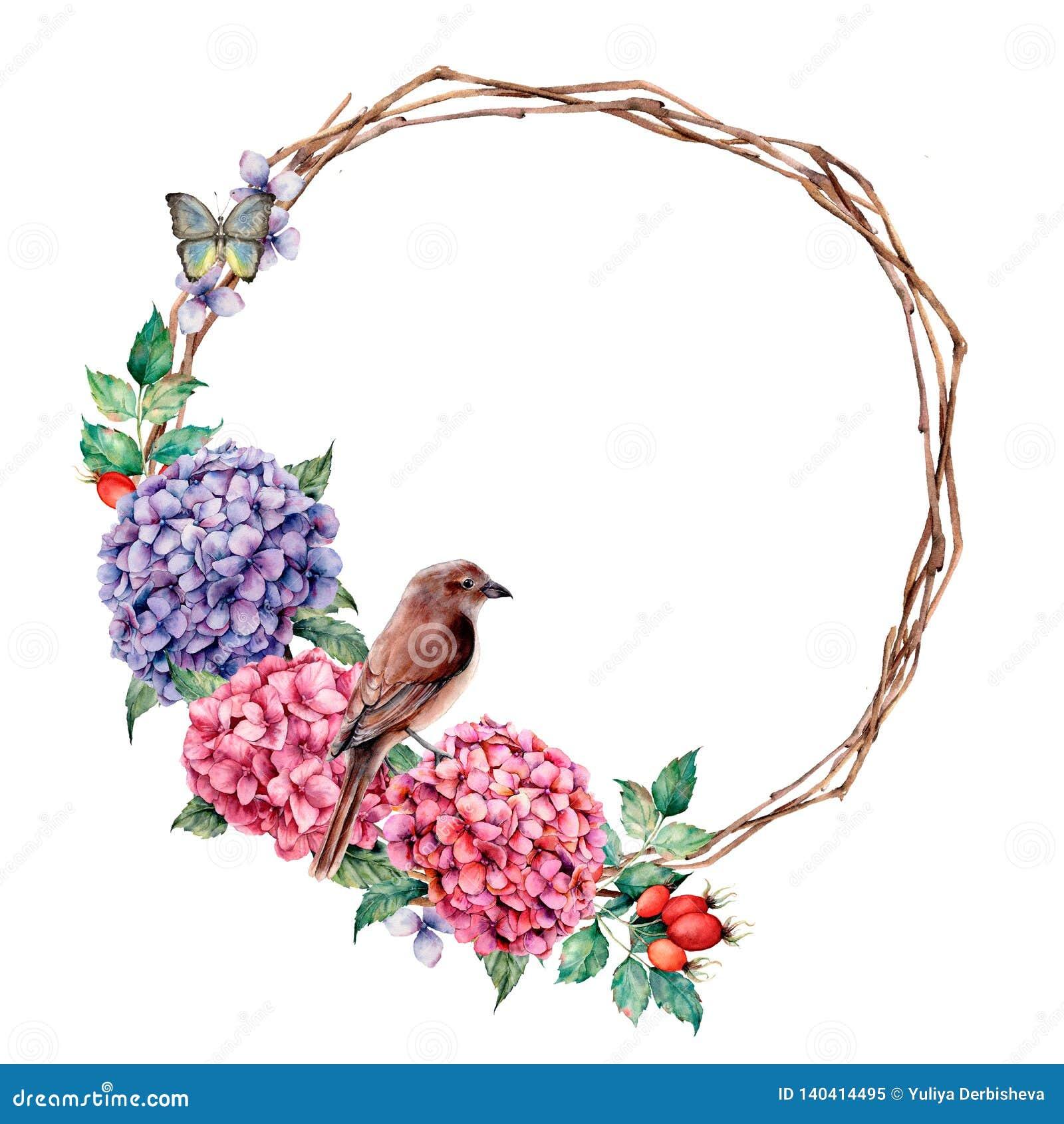Corona dell acquerello con il passero e batterfly Ortensia e rosa canina dipinte a mano con le foglie dell eucalyptus isolate sop