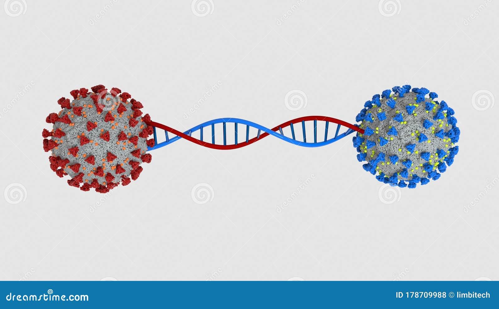Coronavirus Mutation DNA Helix 3D Illustration Stock ...