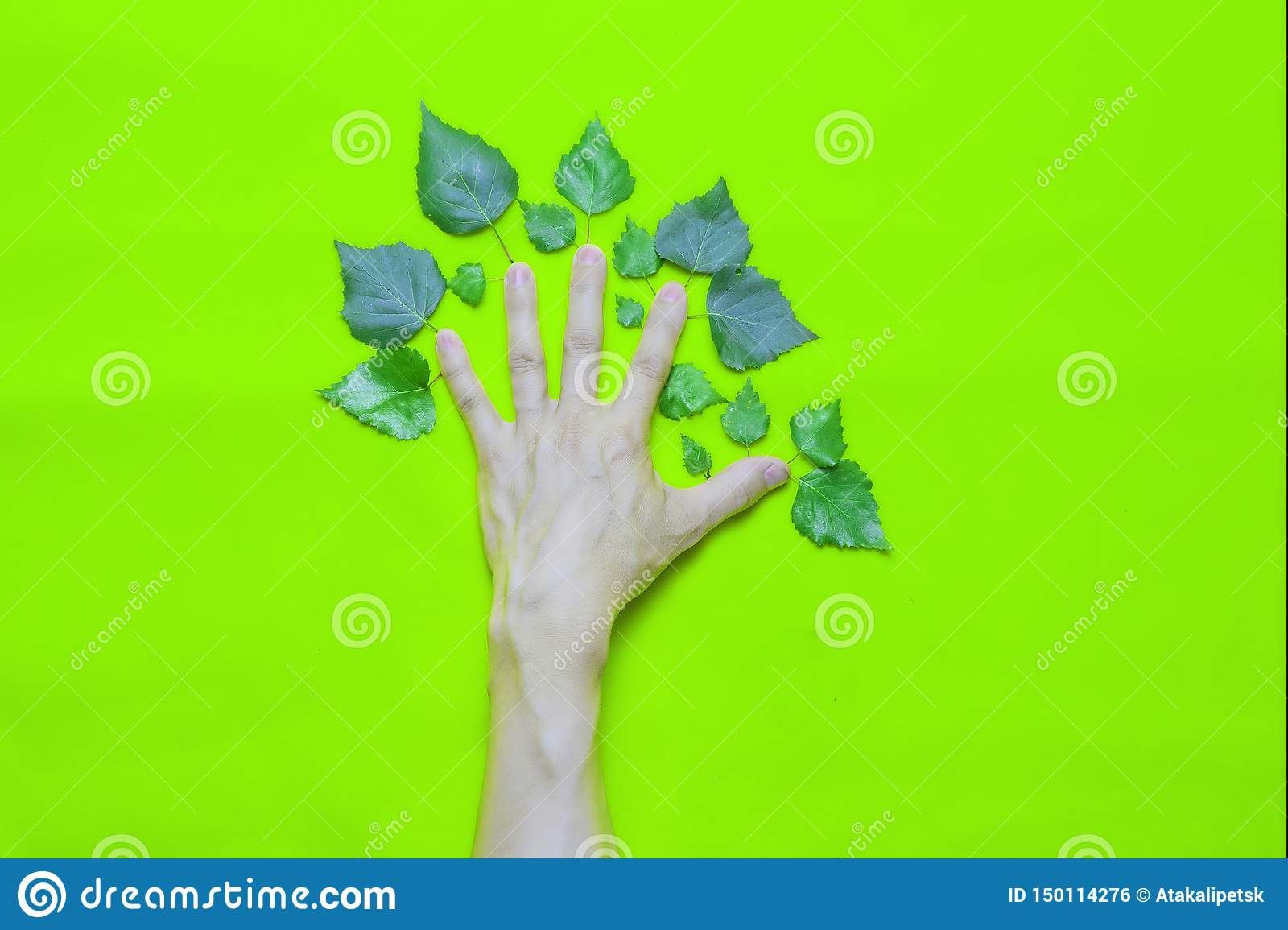 Corporate environmental responsibility concept: Human Hand with leaves in the form of a tree on a green background.