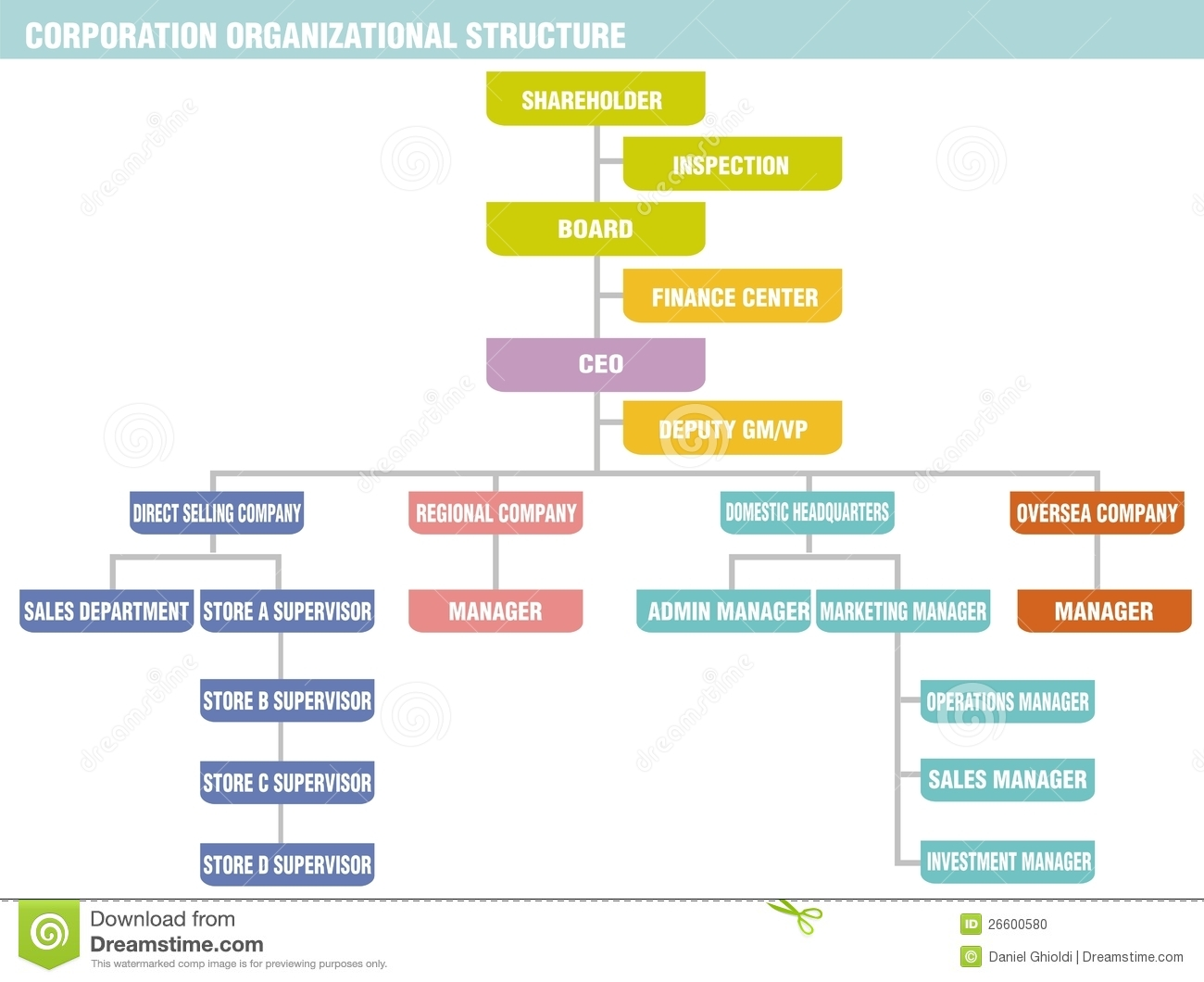 ... organizational structure consists of the shareholder, board of