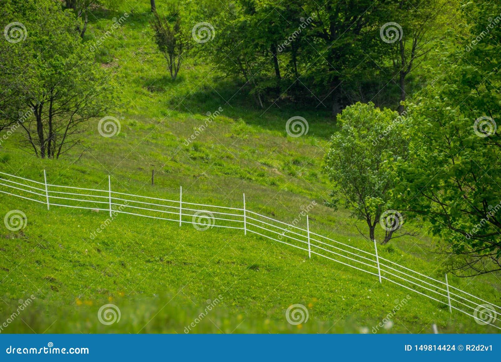 Corral clôturé dans le village