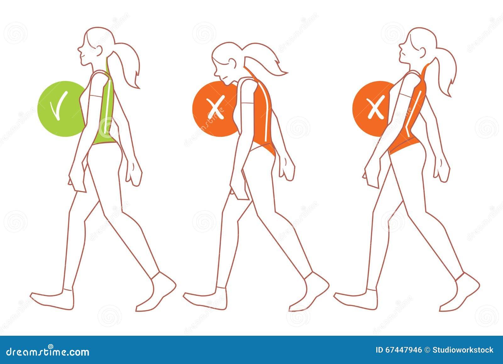 Good And Bad Posture Cartoon Vector Cartoondealer Com