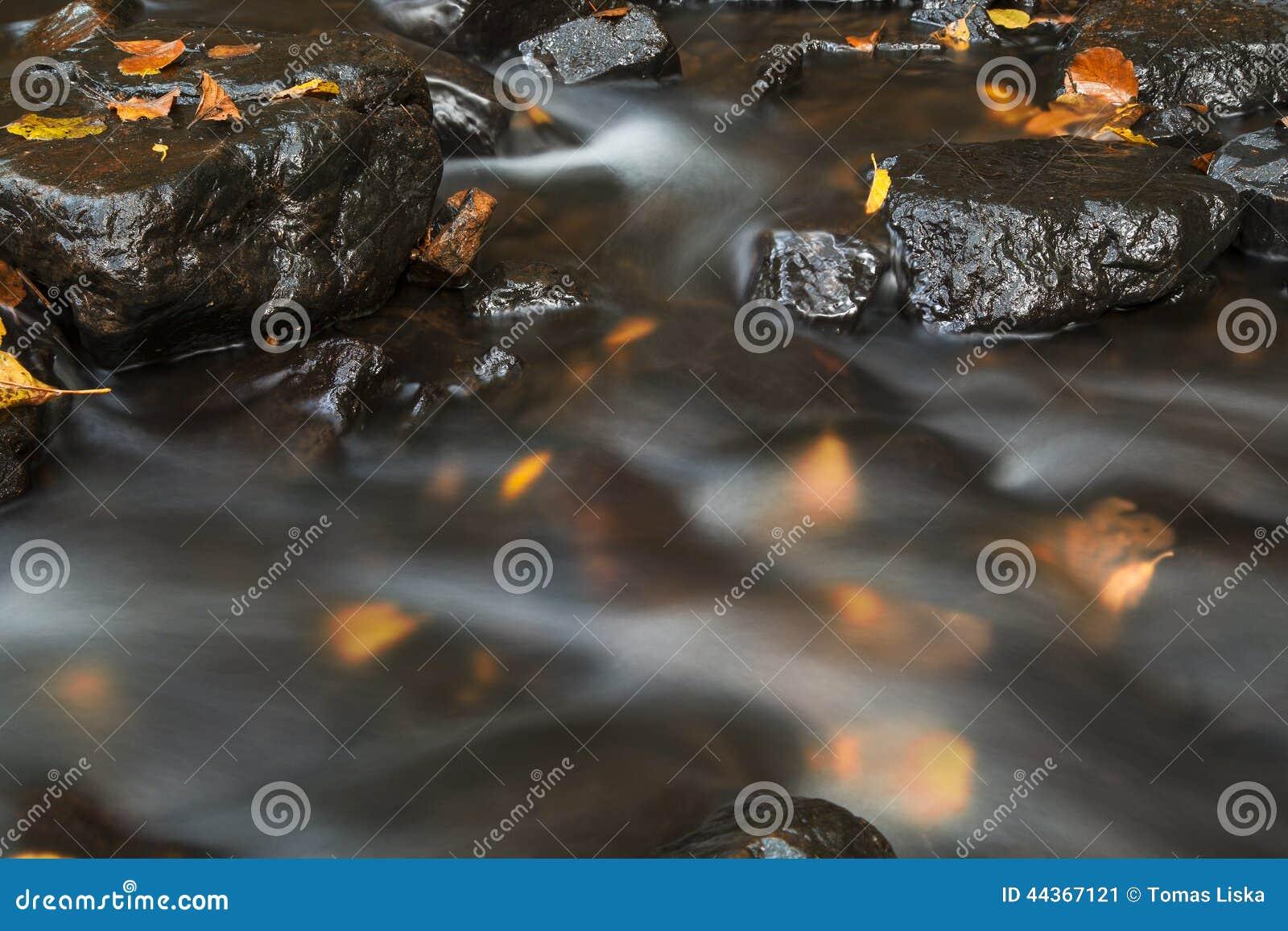 Corrente dell acqua di autunno