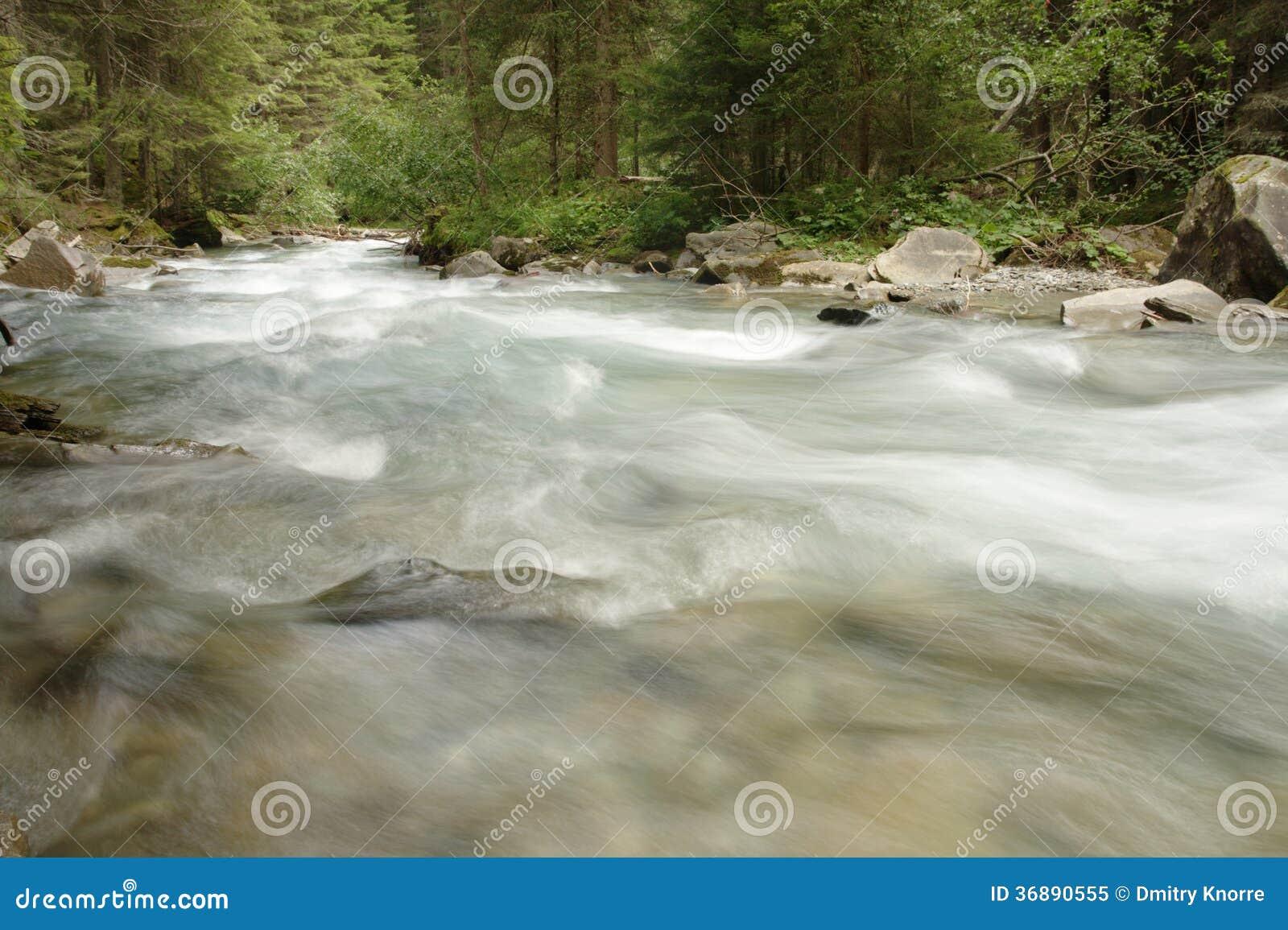 Download Corrente della foresta immagine stock. Immagine di flusso - 36890555