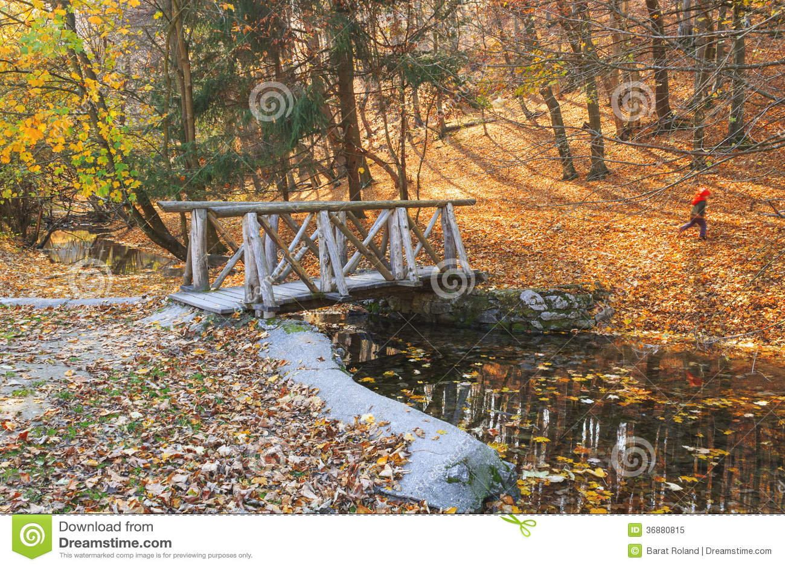 Download Corrente Nella Foresta Di Autunno Immagine Stock - Immagine di picturesque, parco: 36880815