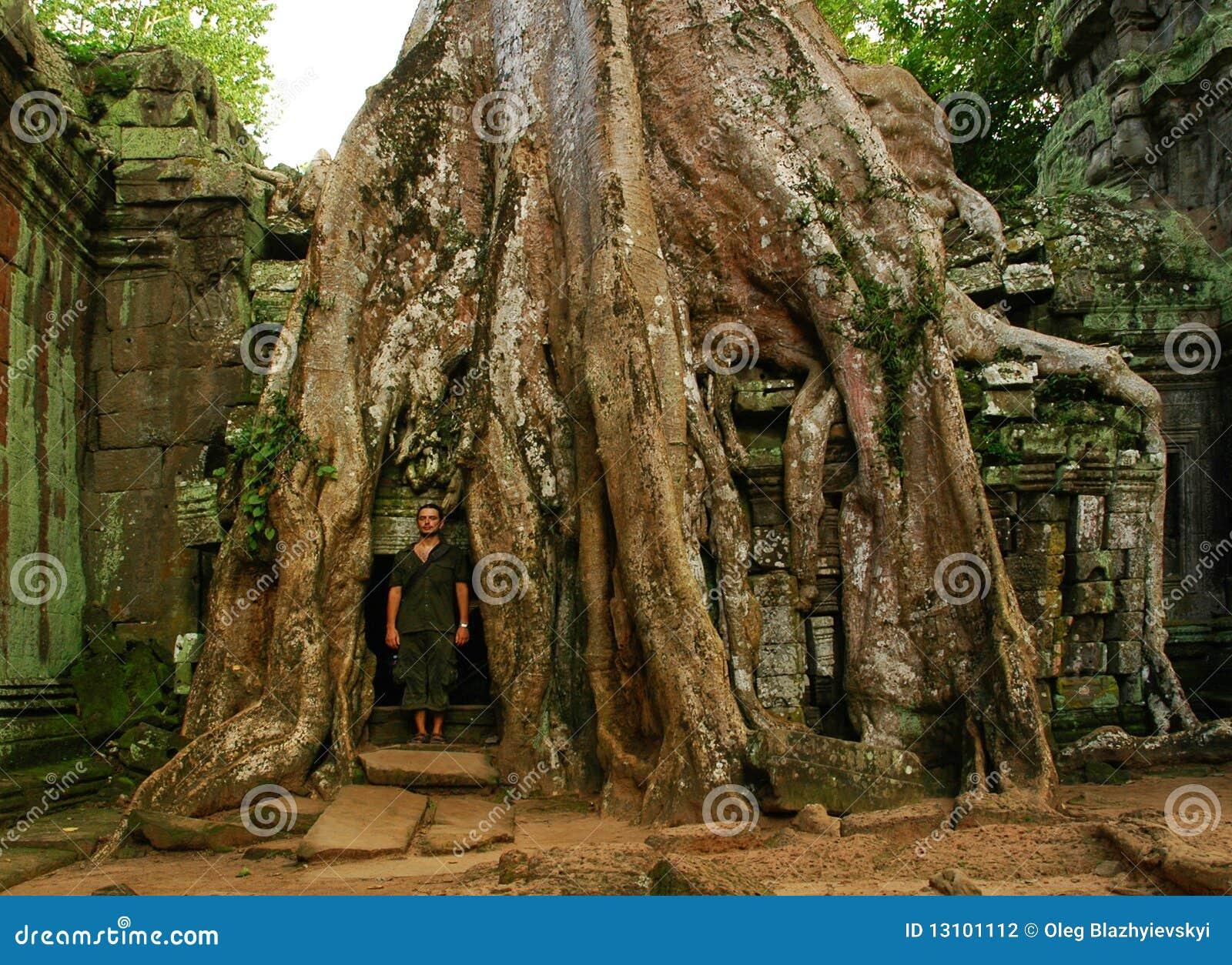 Corridas del templo camboyano antiguo