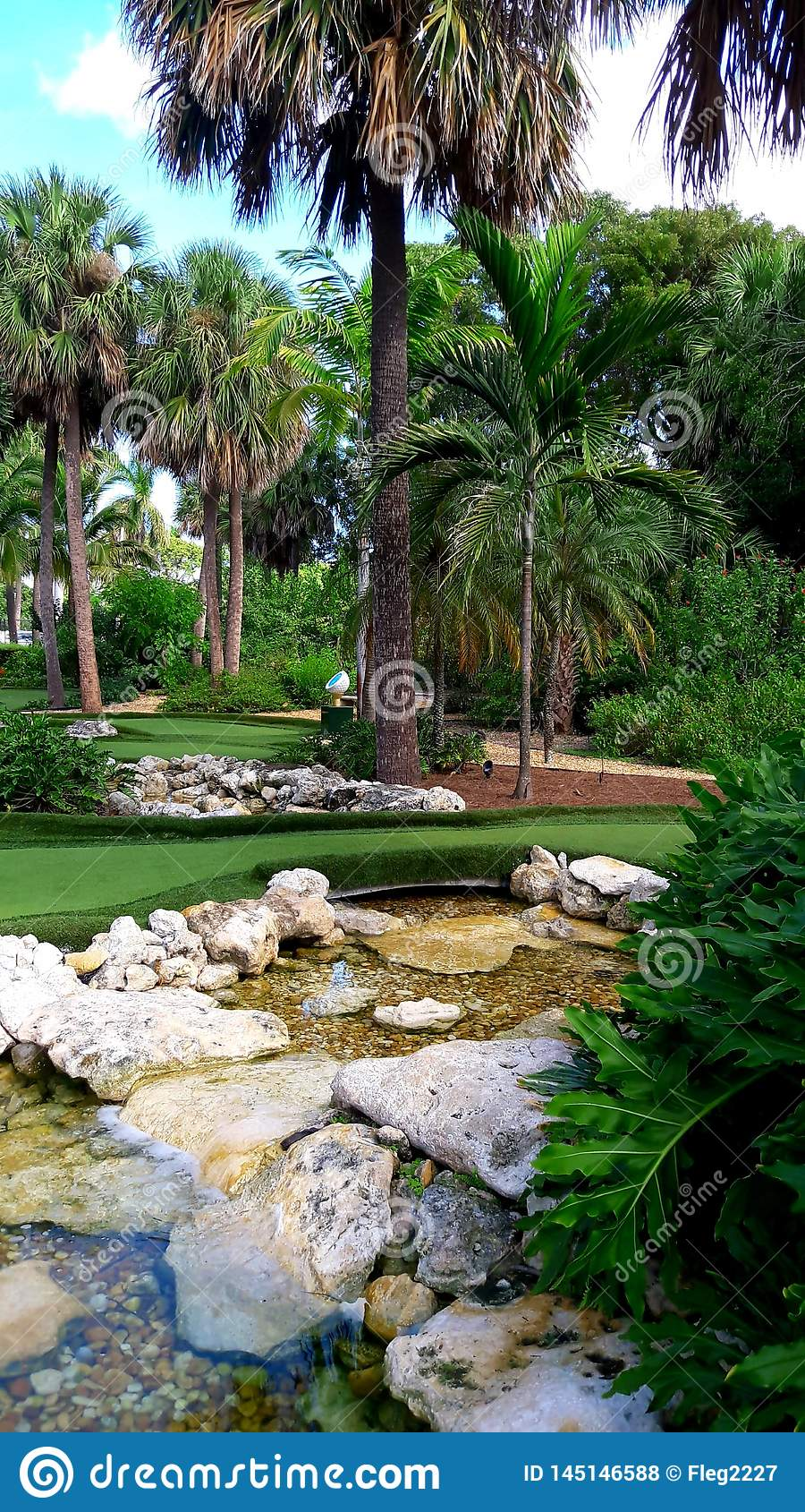Corso tropicale del minigolf e del giardino in Florida