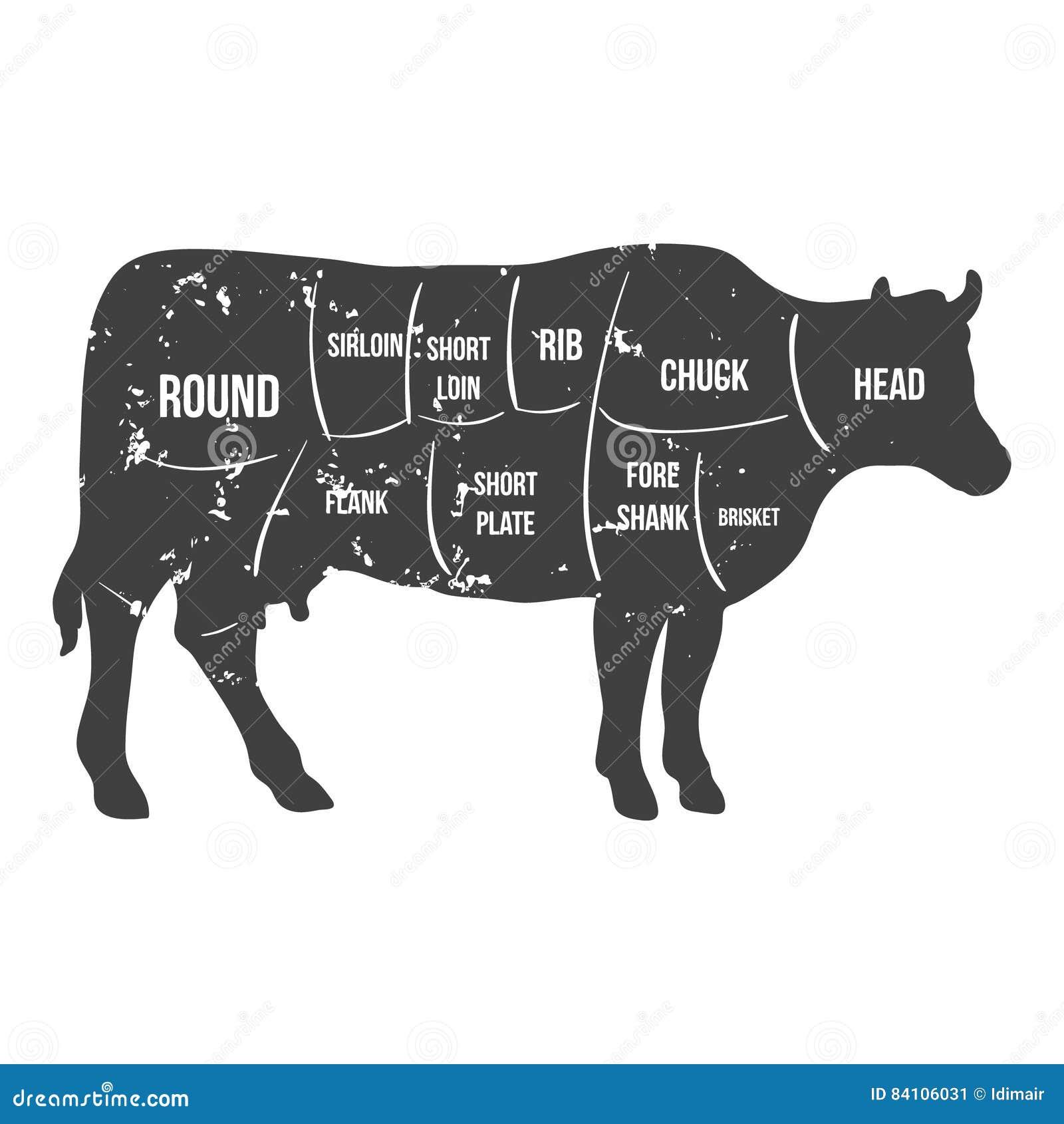 Cortes do carniceiro do vintage do vetor do diagrama da carne