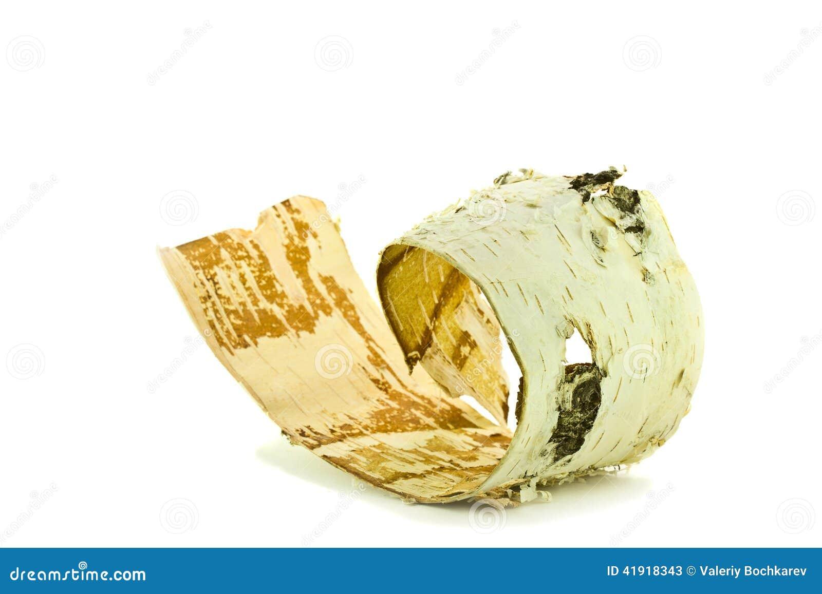 Corteza de abedul en un fondo blanco
