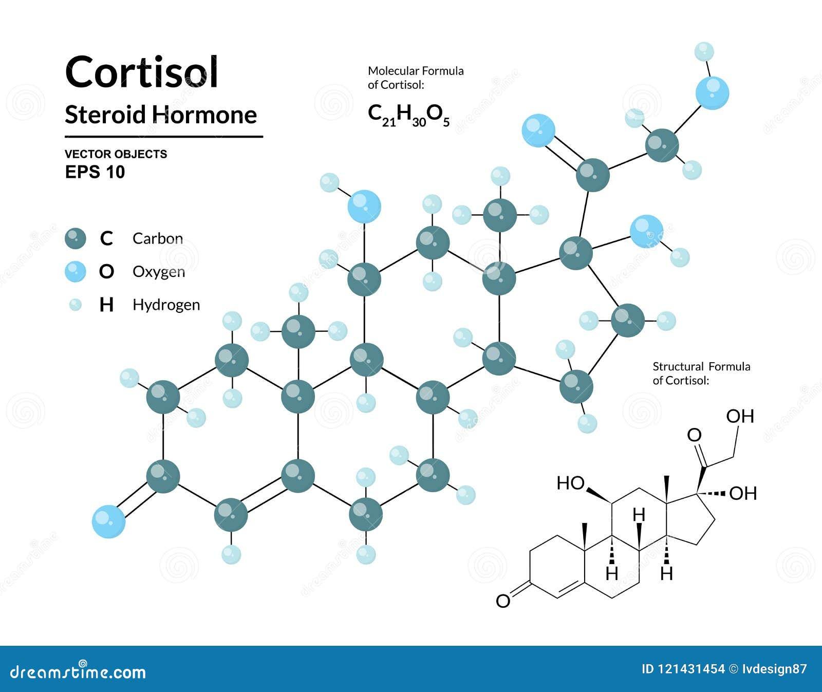 Cortisol Hormona Esteroide Fórmula Molecular Y Modelo