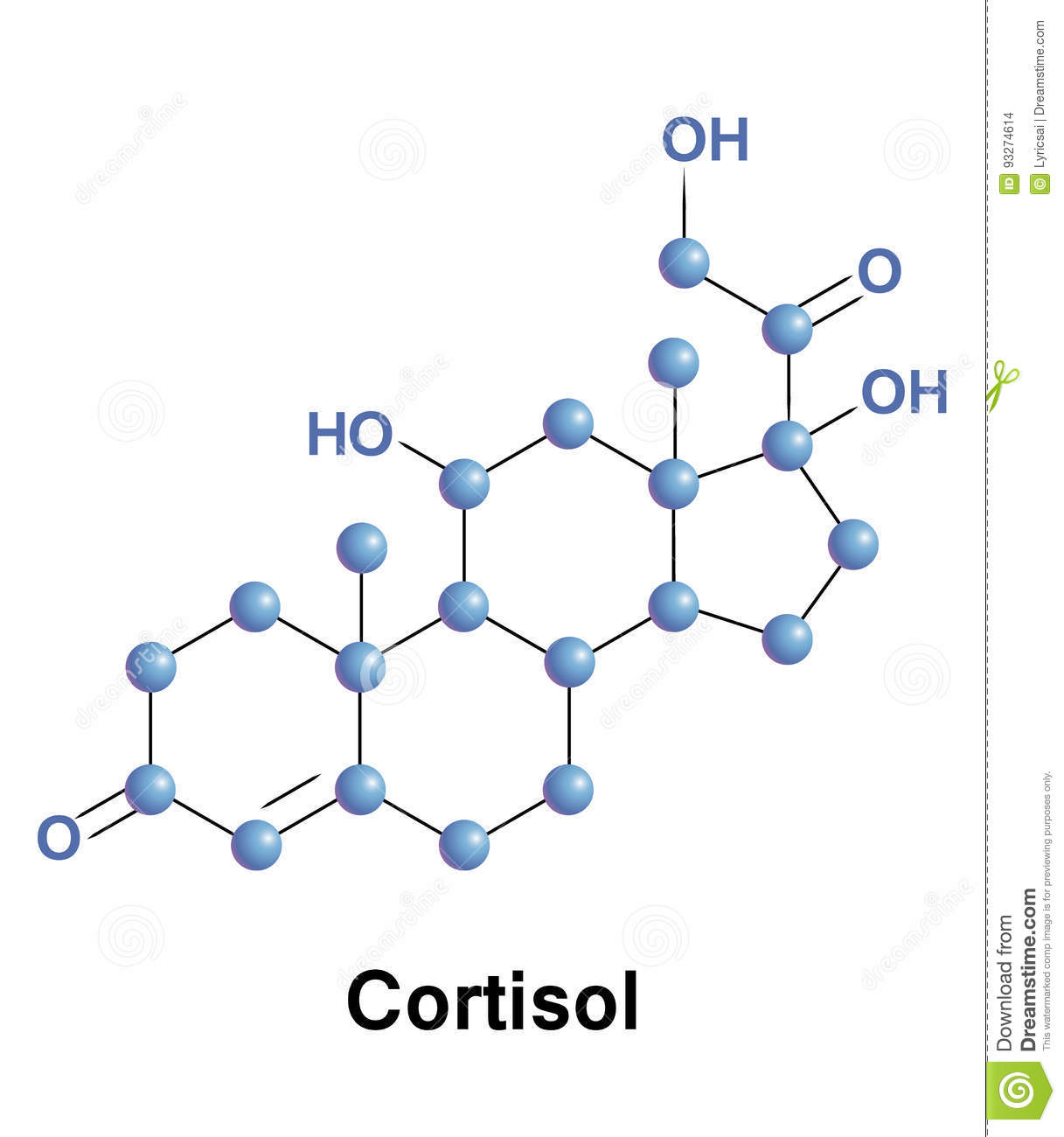 Cortisol Is A Steroid Hormone Stock Vector - Illustration of
