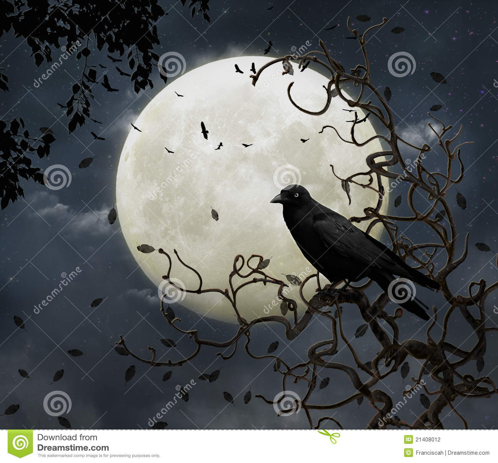 Corvo e lua