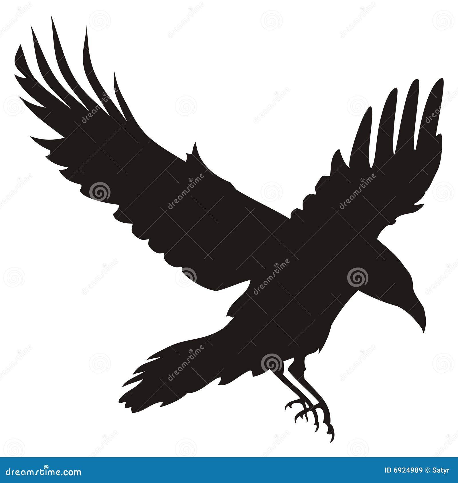 Corvo volante