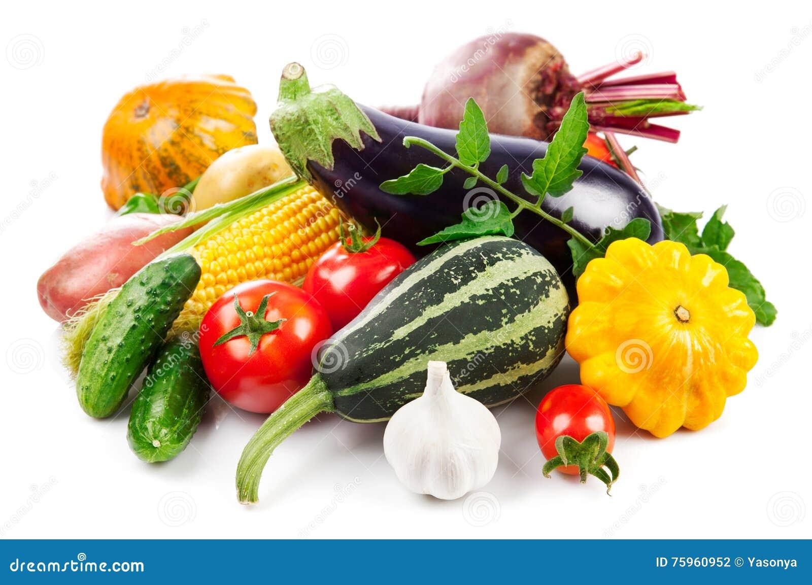 Cosecha otoñal de las verduras frescas con las hojas verdes