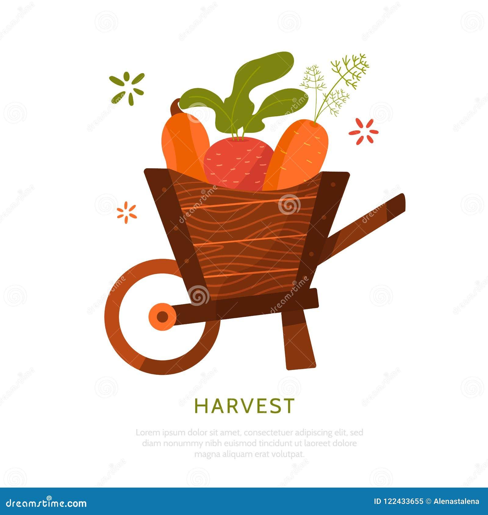 Coseche el carro con las remolachas, la zanahoria y la calabaza aisladas en el fondo blanco Concepto de la cosecha